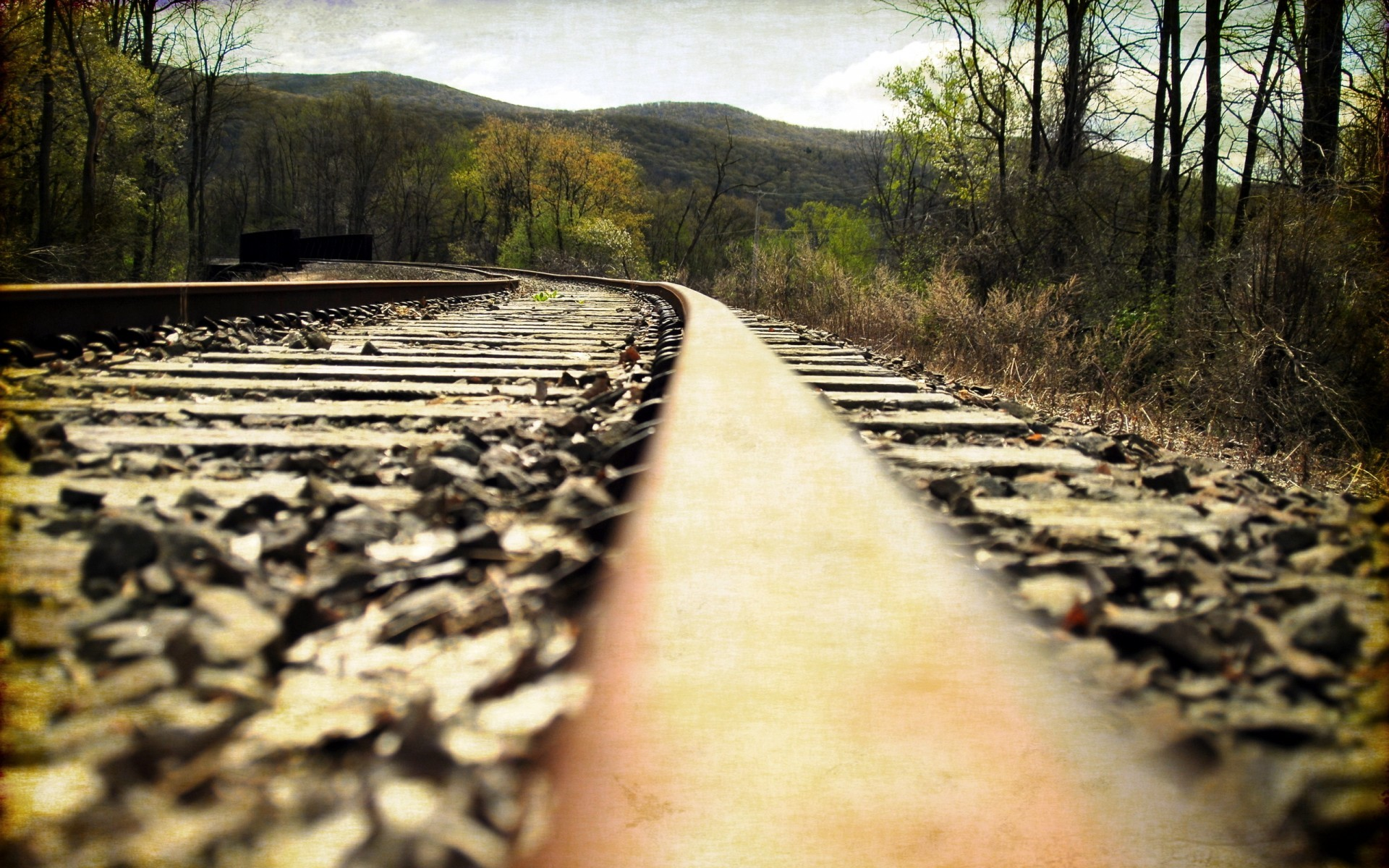 i don't know what it is about train tracks.