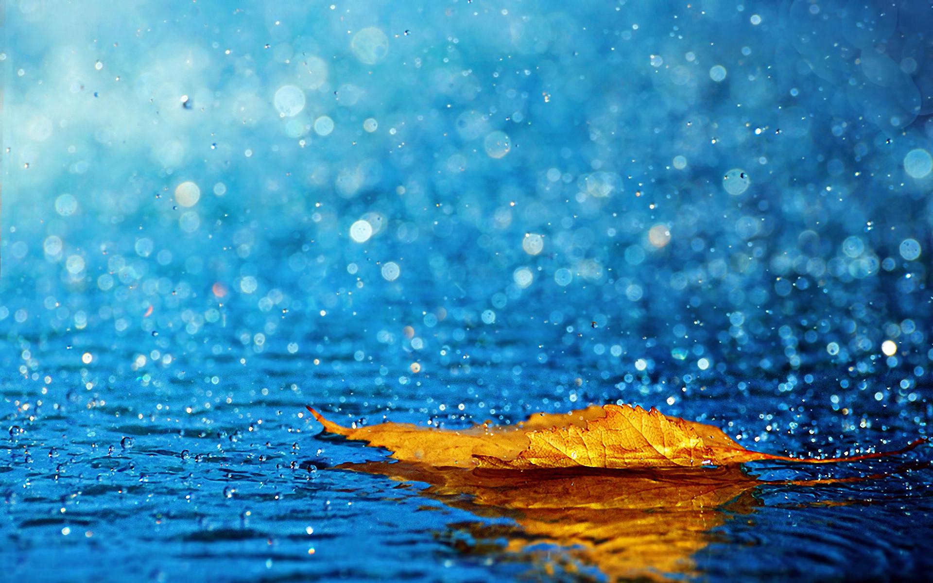 Beautiful Rain Falling Desktop Wallpapers HD Pictures
