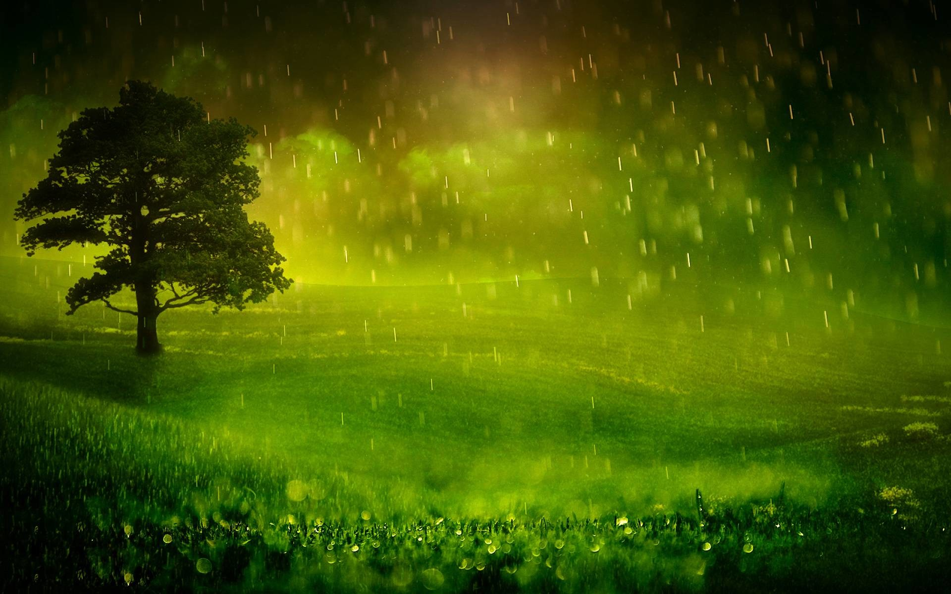 Wallpapers For > Nature Raining Wallpaper With Quotes