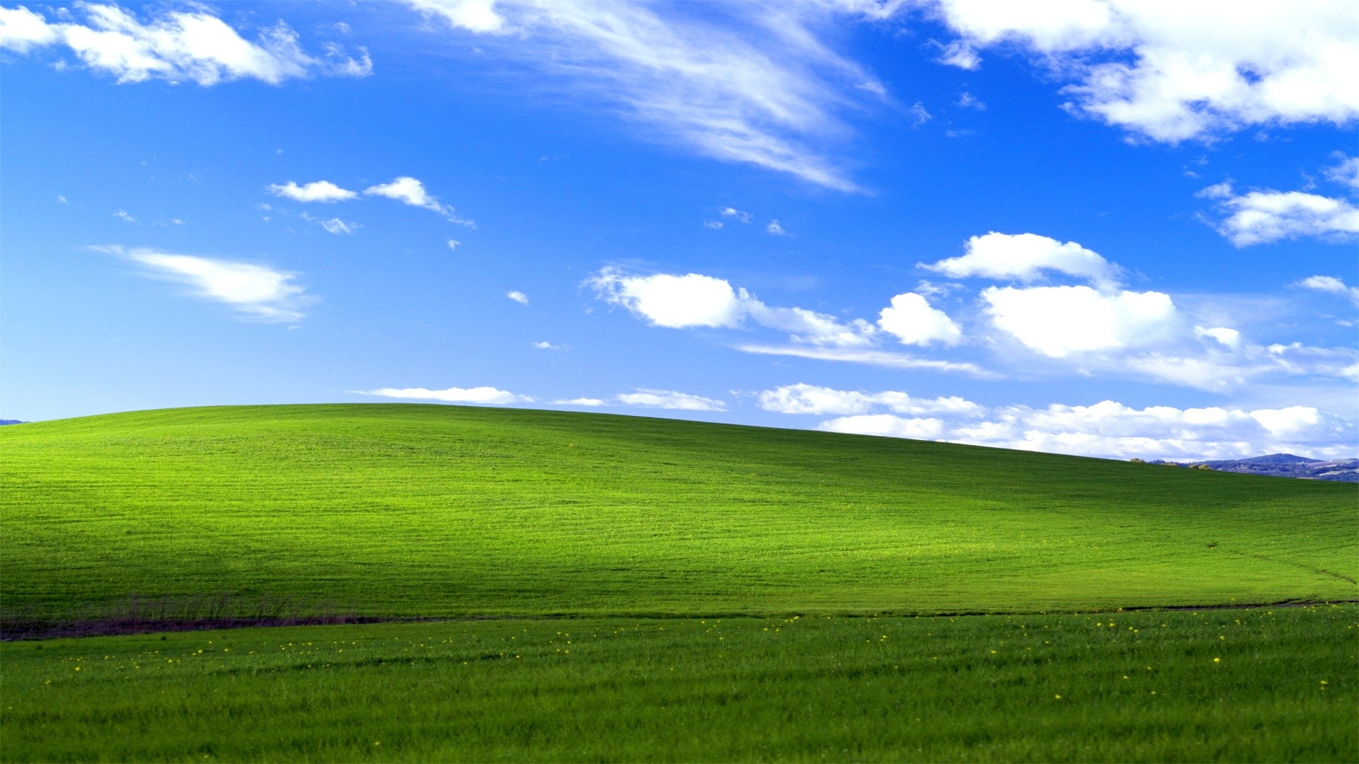 Windows XP Bliss Wallpapers | HD Wallpapers
