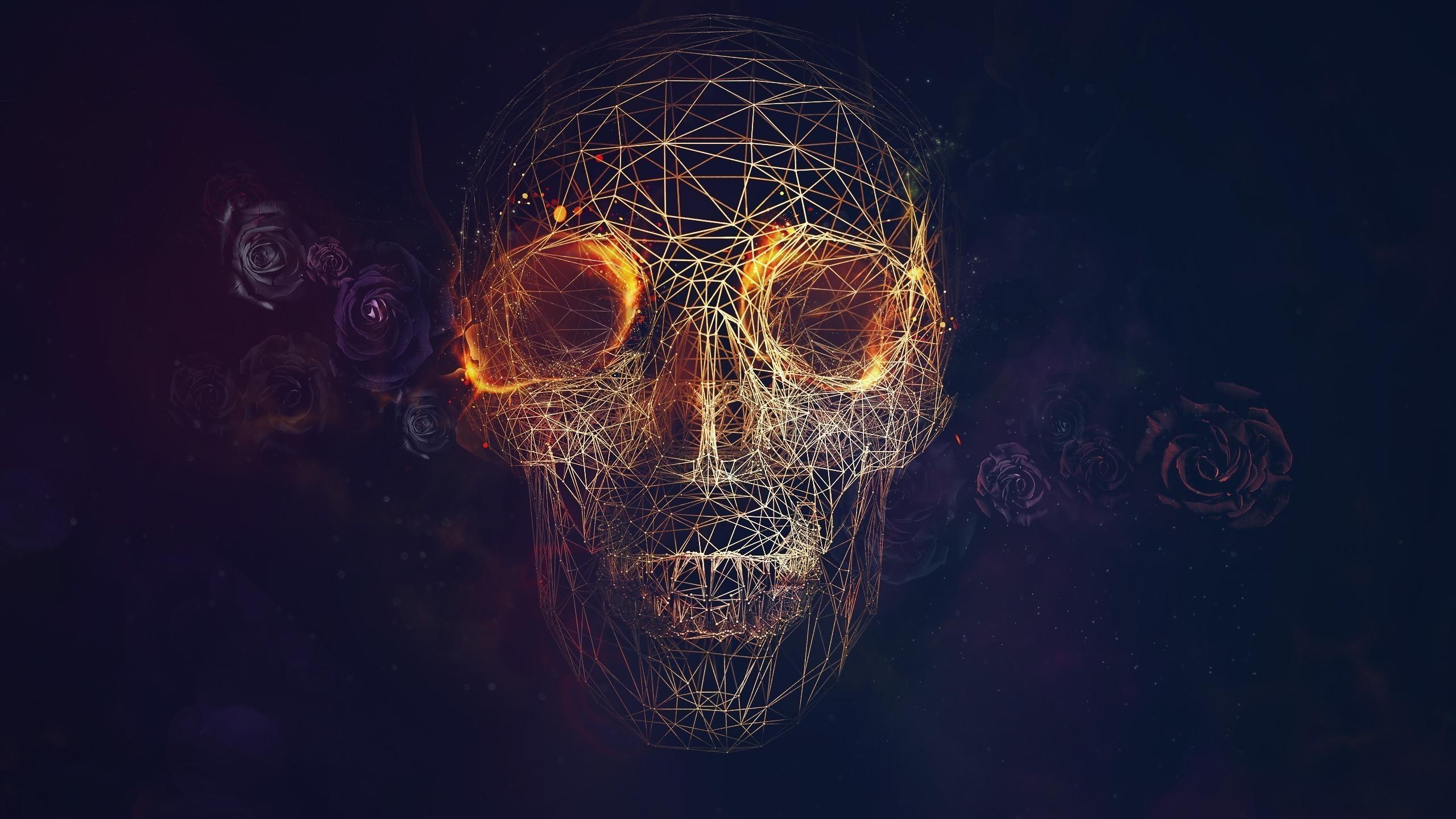 3-D Skull Wireframe Wallpaper