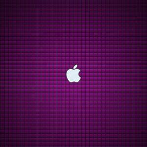 Plain Wallpaper for Desktop Purple