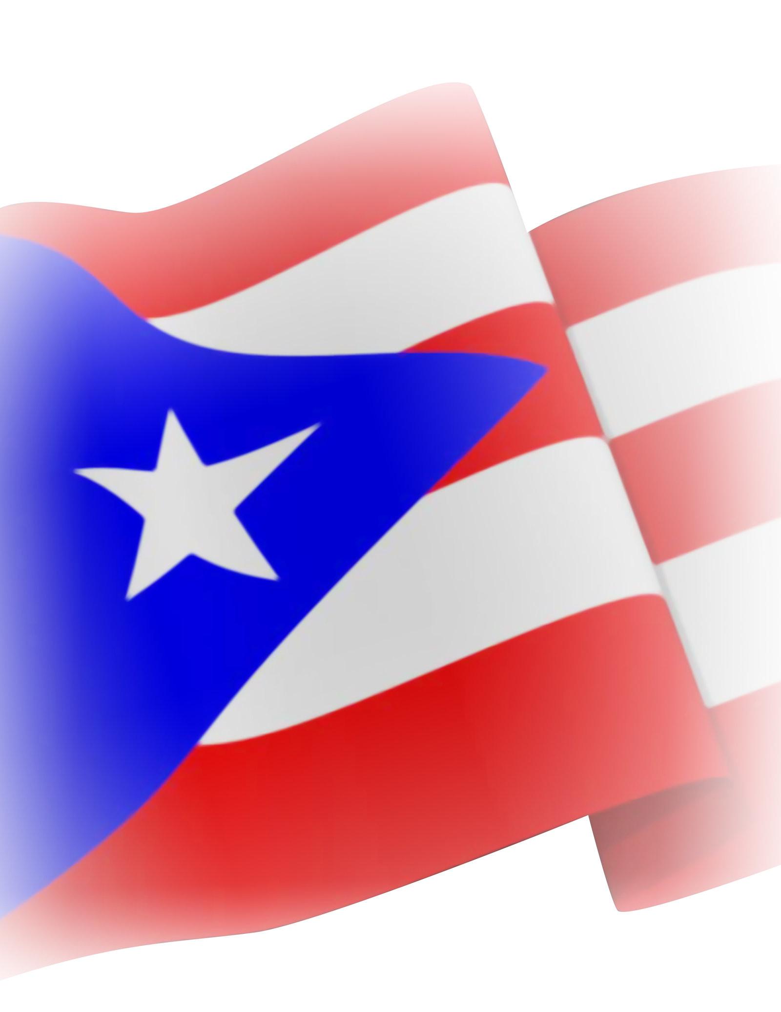 Puerto rico flag bikini