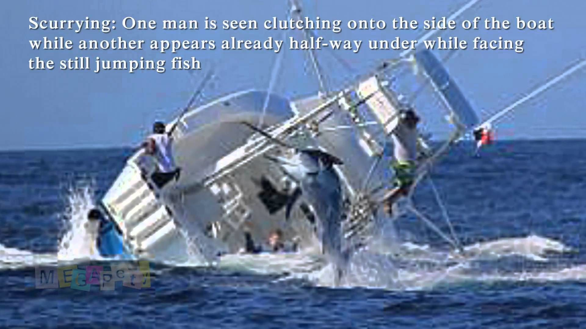 53 Offshore Fishing
