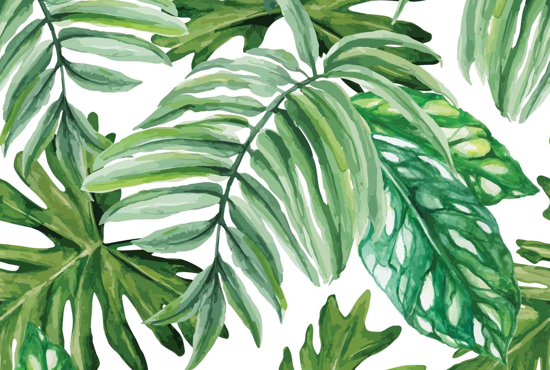 … wallpaper decoratorsbest; green tropical leaves cara saven wall design  carasaven com …