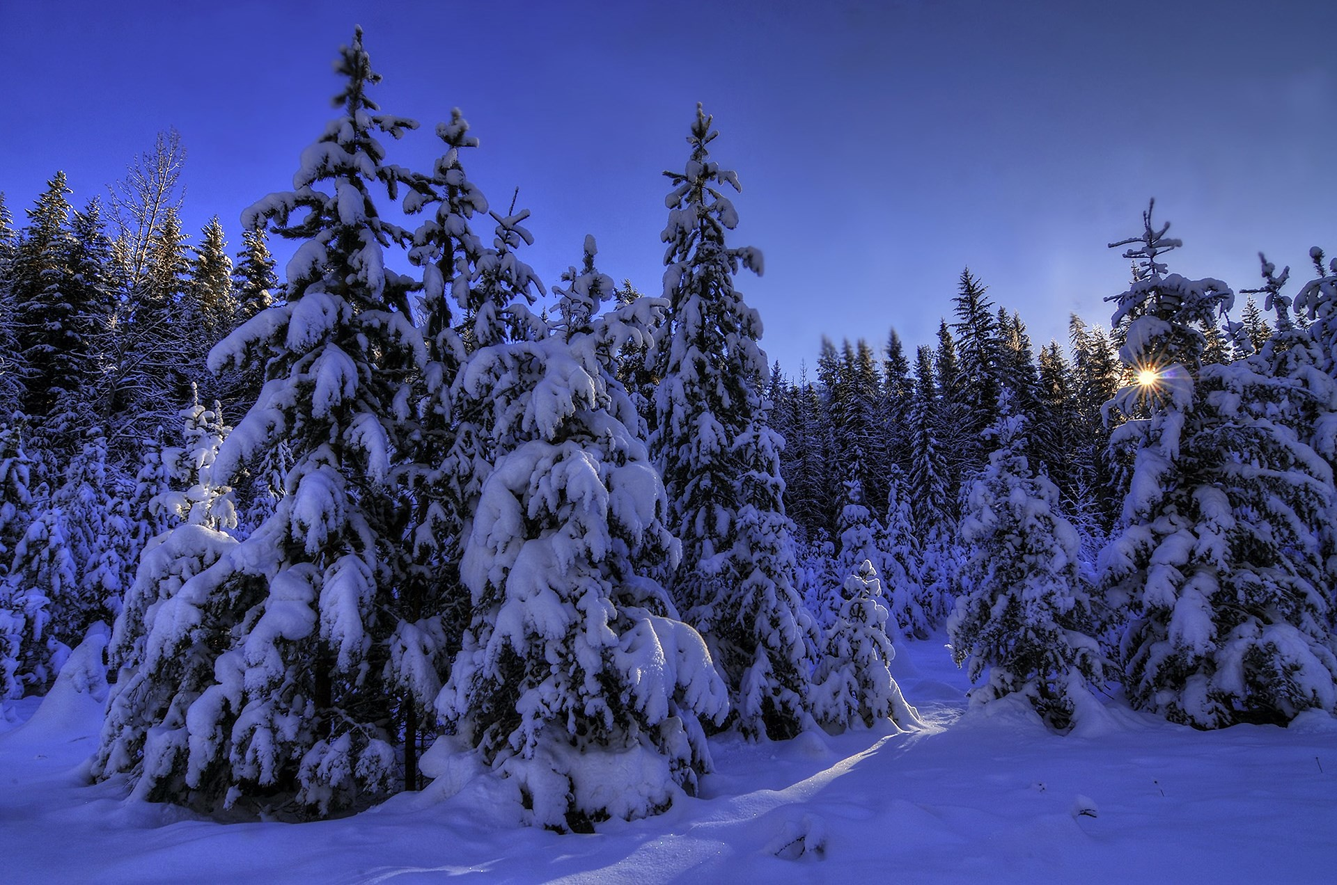 2017-03-25 – winter theme background images, #1656363
