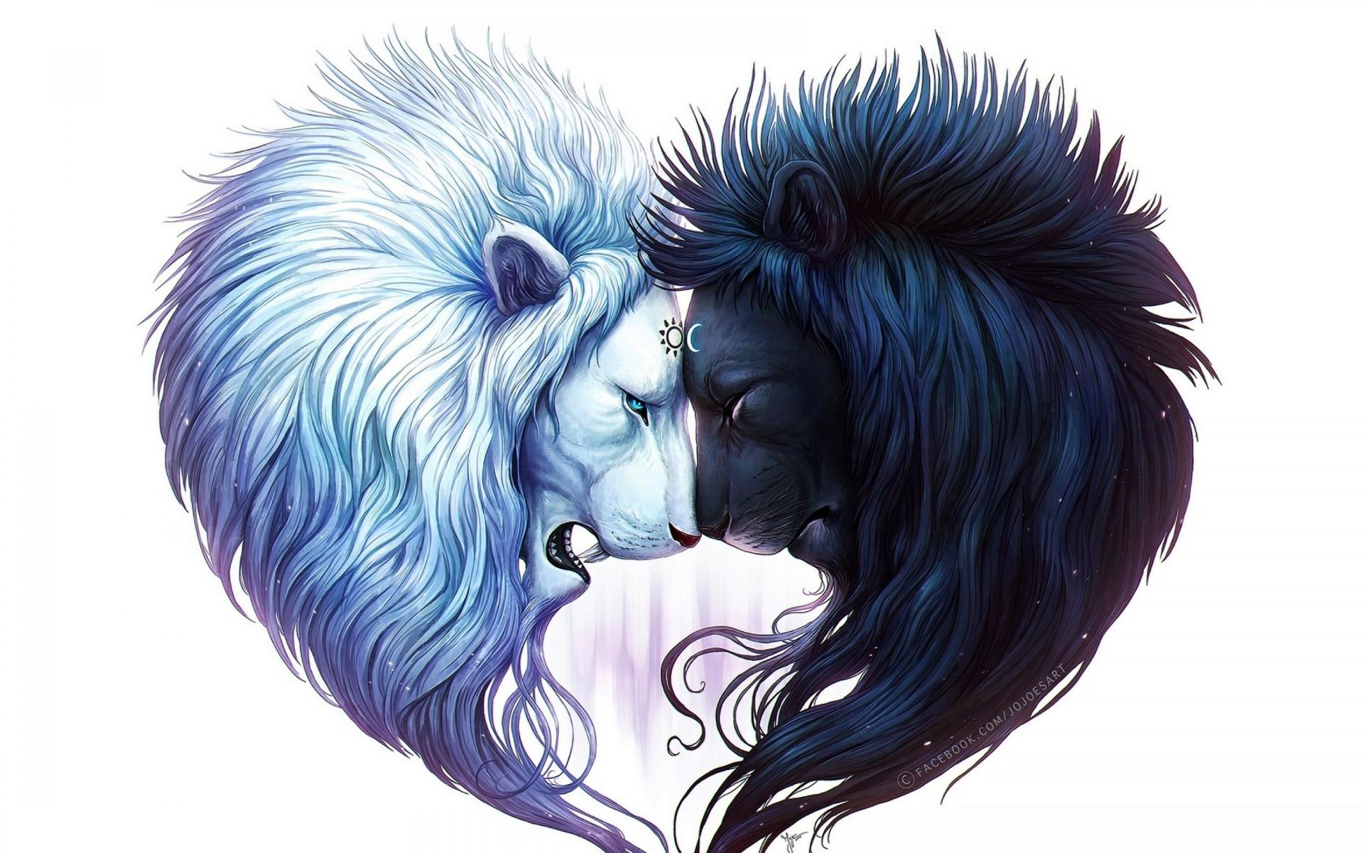 Animal – Lion Artistic Black White Black & White Yin & Yang Wallpaper