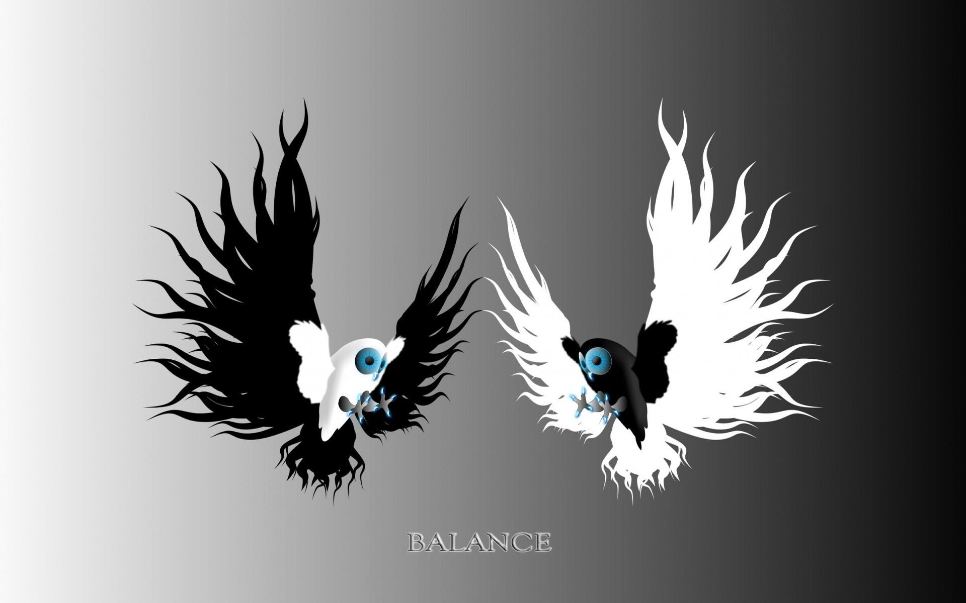 Yin & Yang Owls wallpapers and stock photos