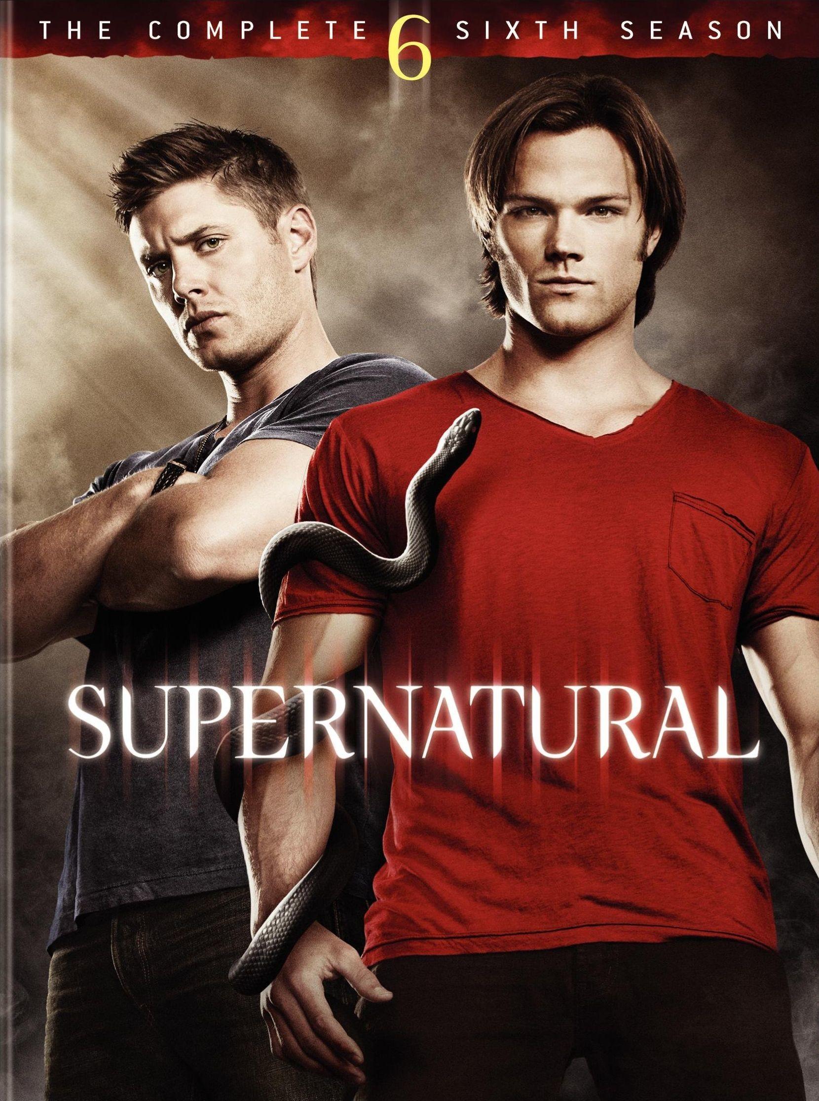 cover. Supernatural: Season 6