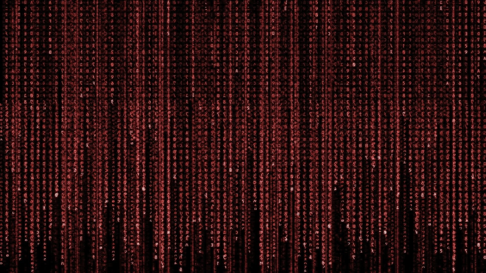 Animated Matrix Wallpaper Windows 10 WallpaperSafari