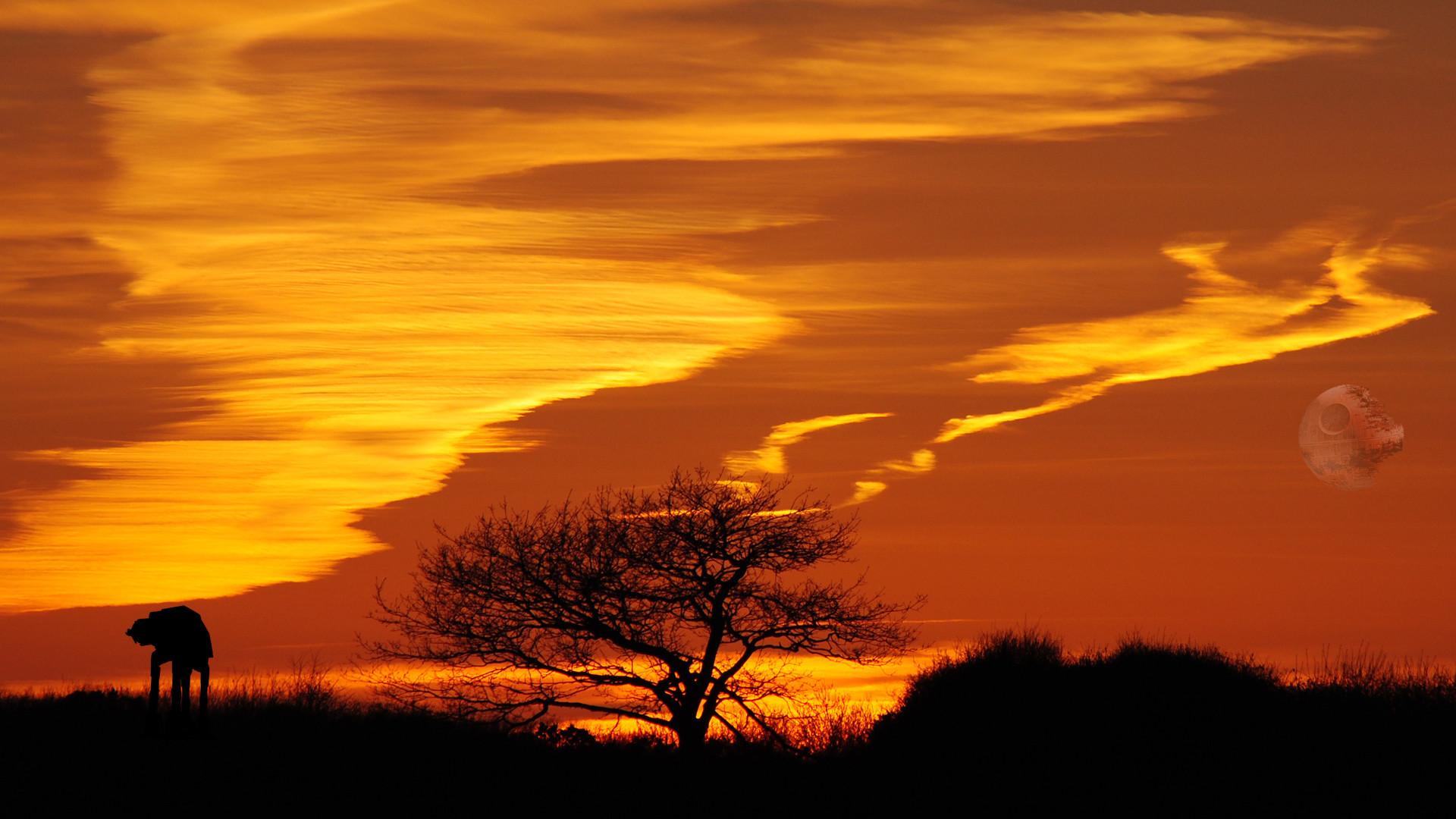 Landscape Nature Star Wars Sunset Tree