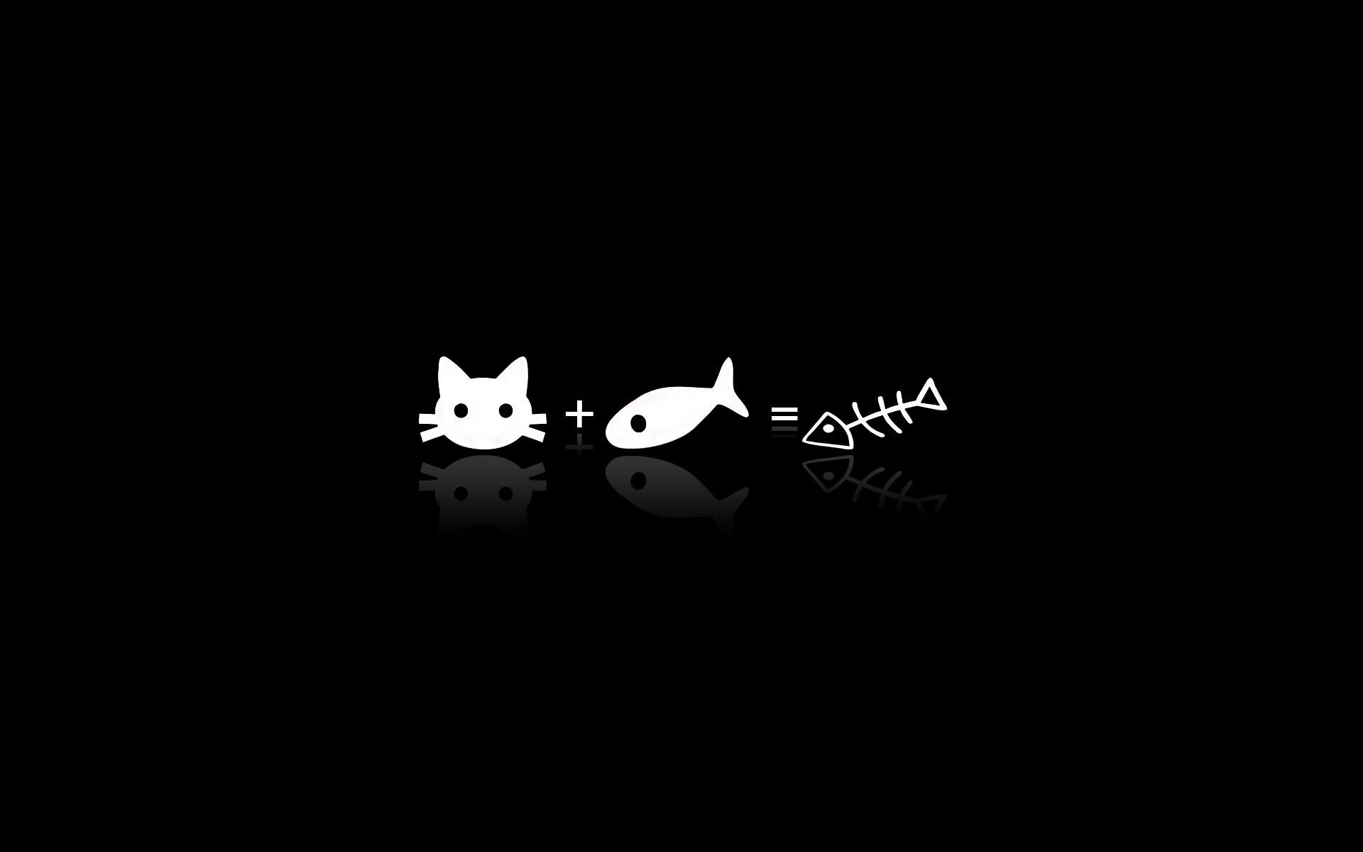 black cat minimalism text logo brand darkness bat computer wallpaper black  and white monochrome photography font