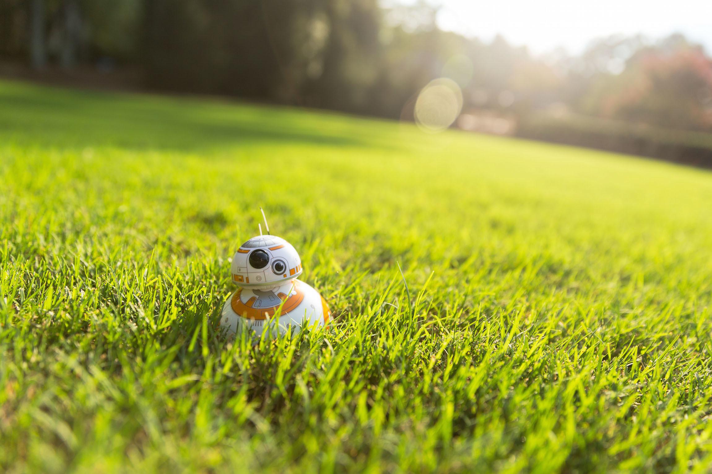 Sphero BB-8 in grass