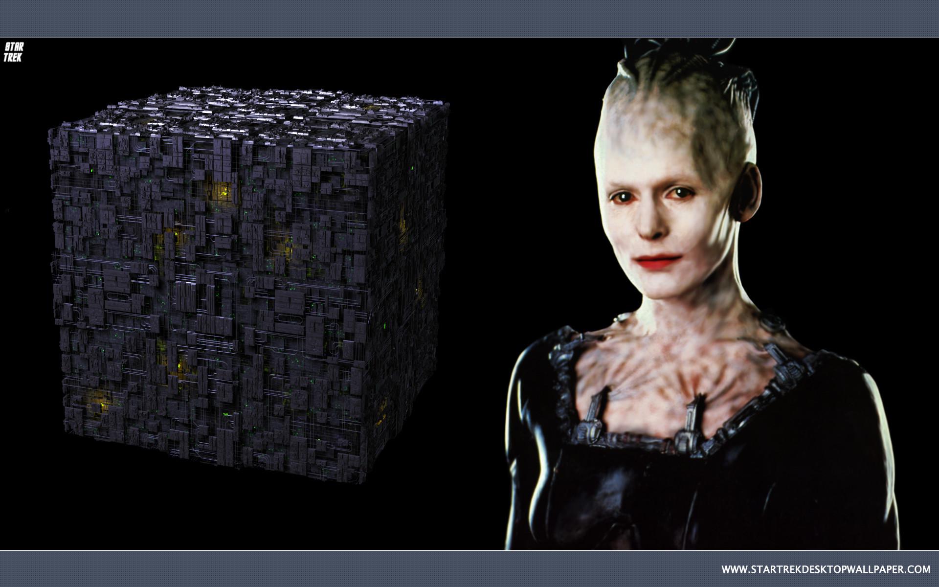 Star Trek Borg Queen – free Star Trek computer desktop wallpaper, pictures,  images