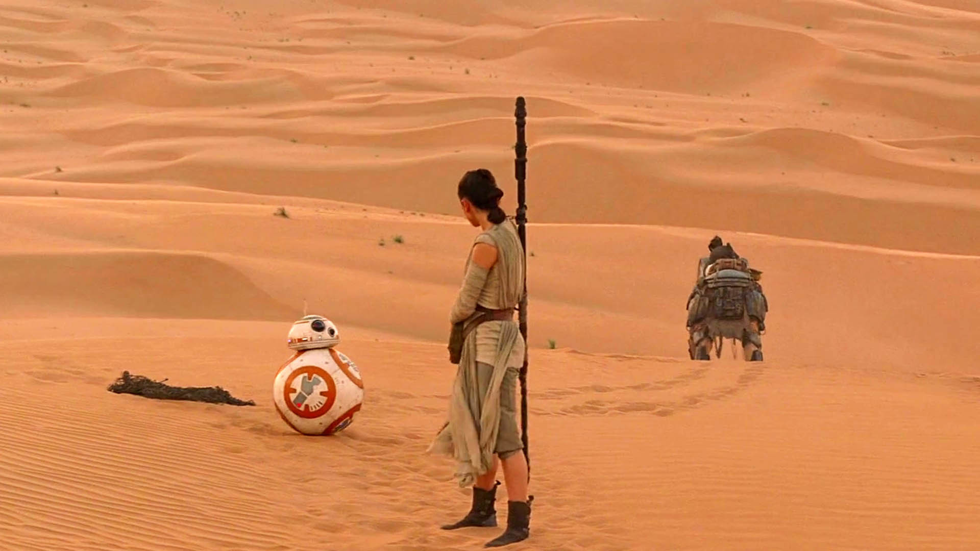 Rey encounters BB-8 – Star Wars: The Force Awakens wallpaper