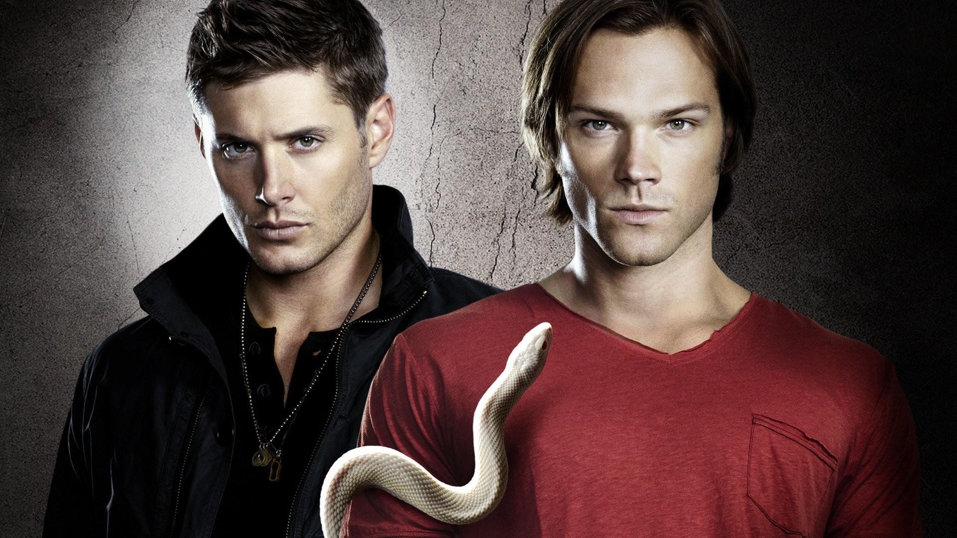 supernatural dean sam winchester brothers supernatural tv series dean sam  snake jensen ackles jared padalecki j2