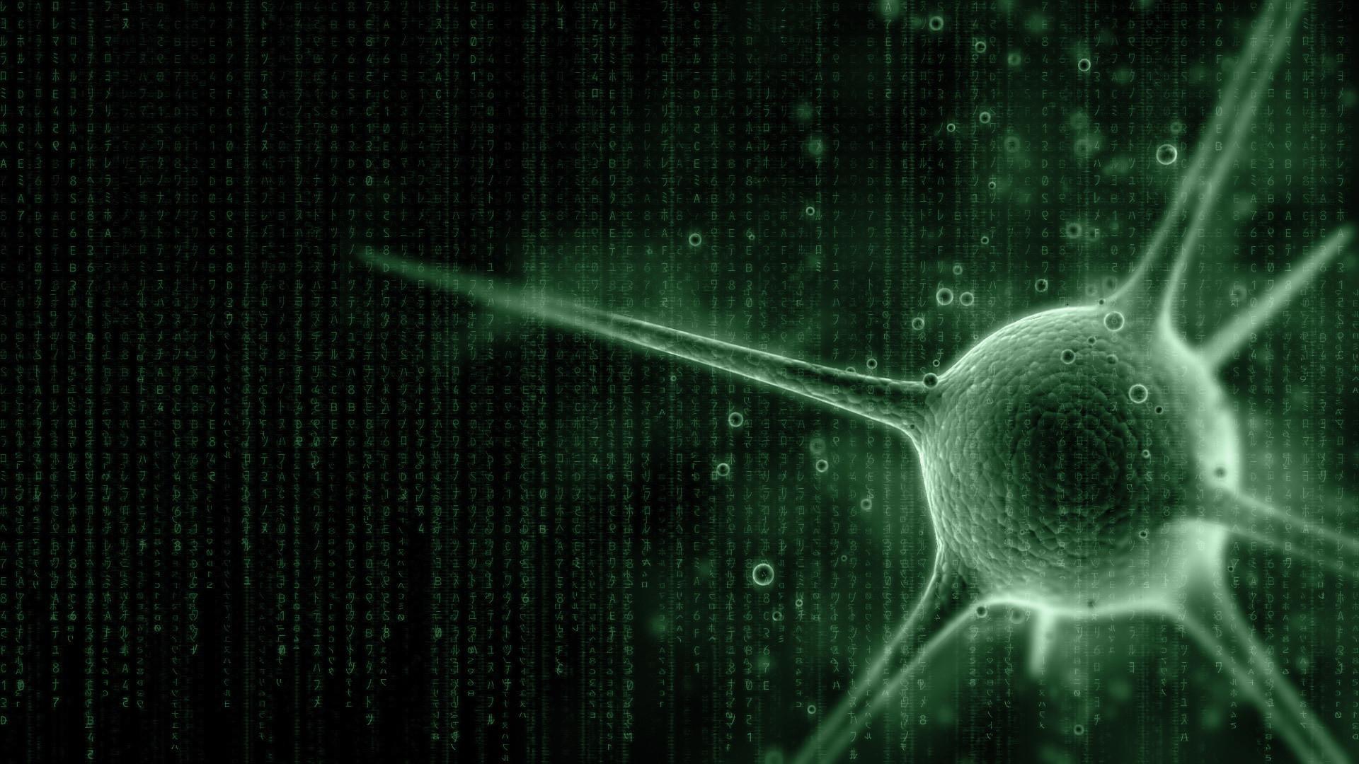 The Matrix Code Wallpaper Hd