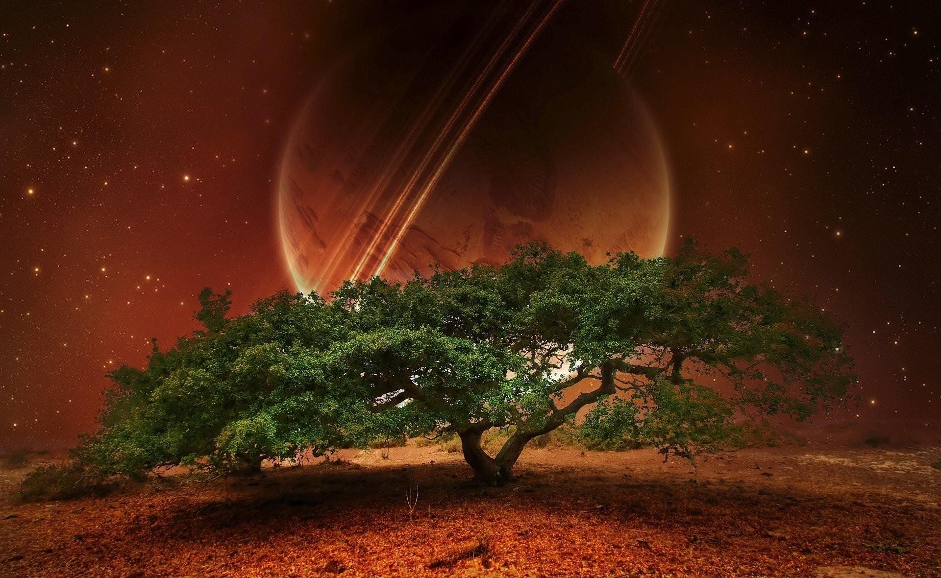 HD Wallpaper   Background ID:292999. Sci Fi Landscape. 22 Like.  Favorite