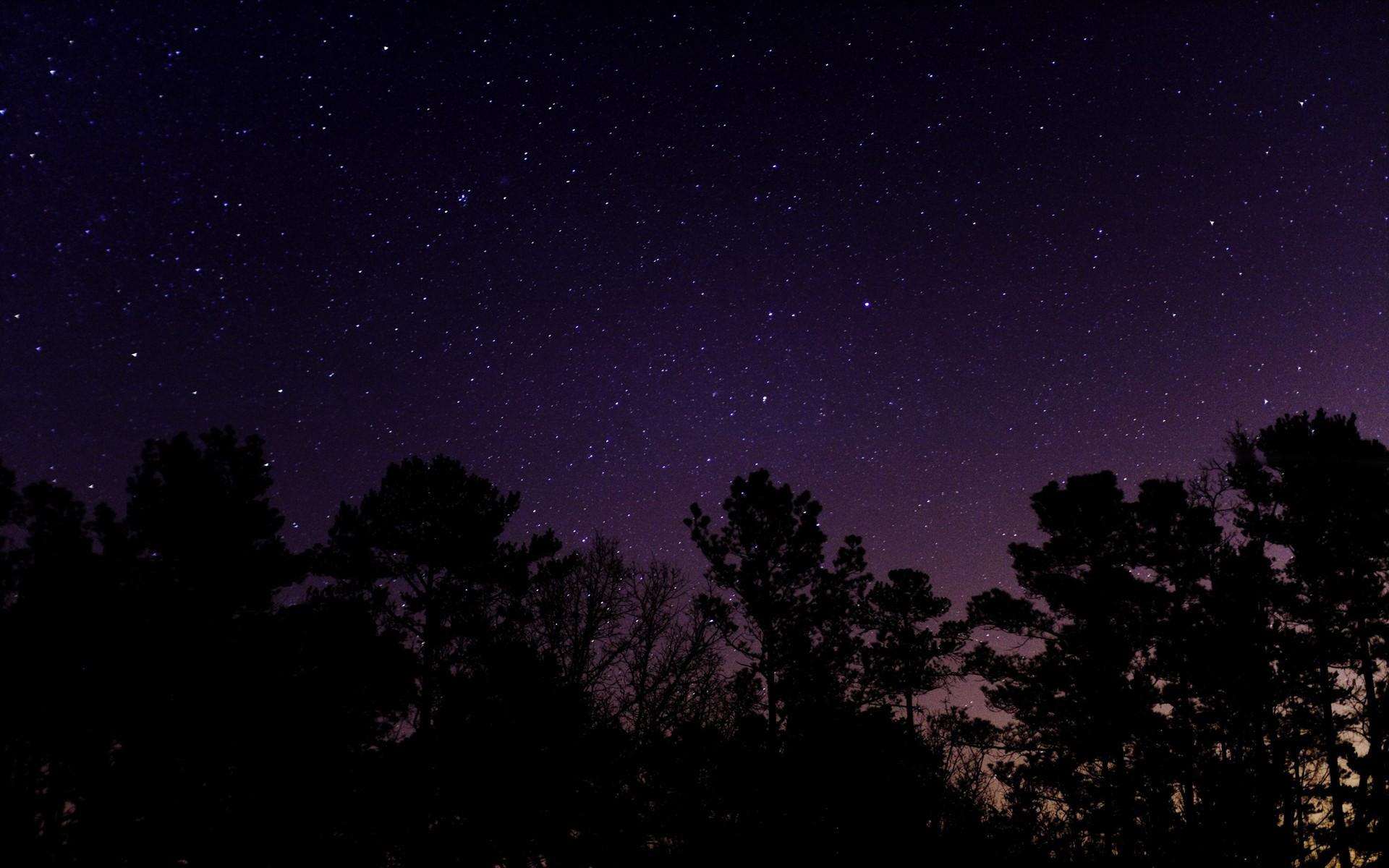 <b>Nature Starry Night</b>