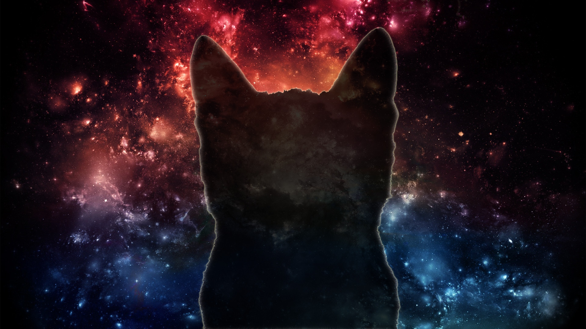 Space Cat [1920×1080] : wallpapers