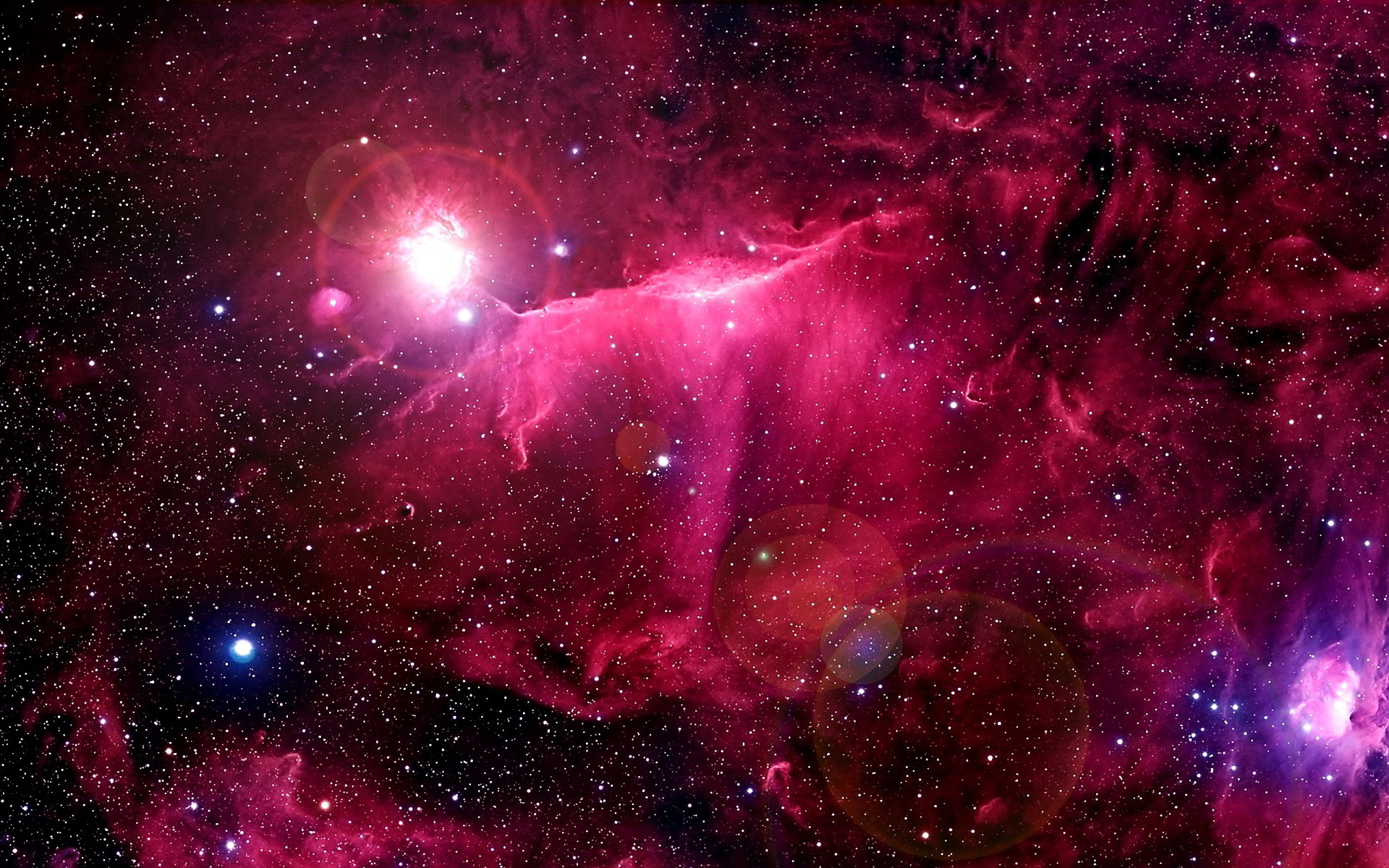 Space is an infinite inspiration. See that hot, fleshy rose and that  textured wisp of purple? Space is so cold, yet all this warmth is still  visible.