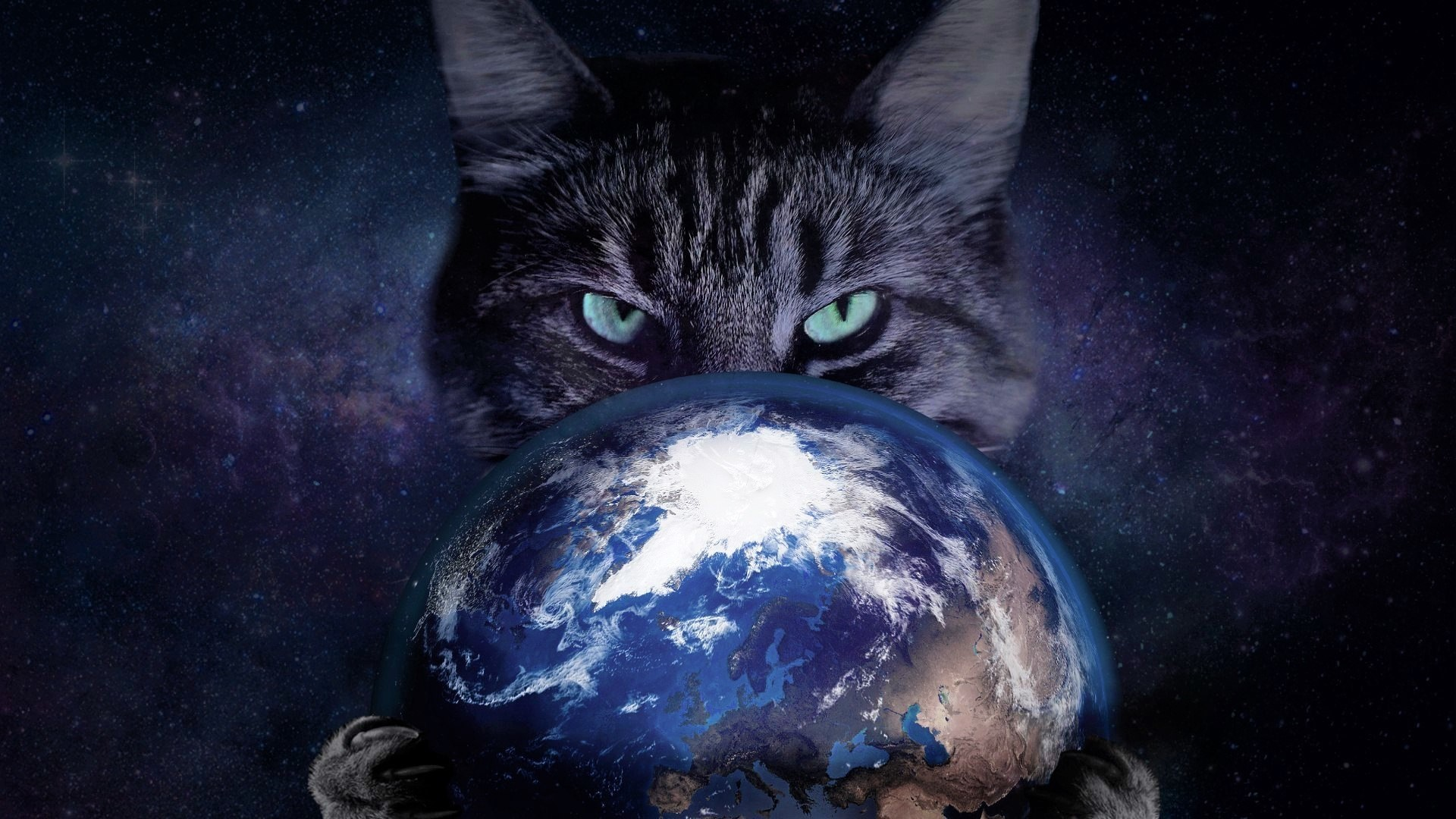 Photography – Manipulation Artistic Photoshop Cat Planet Earth Wallpaper
