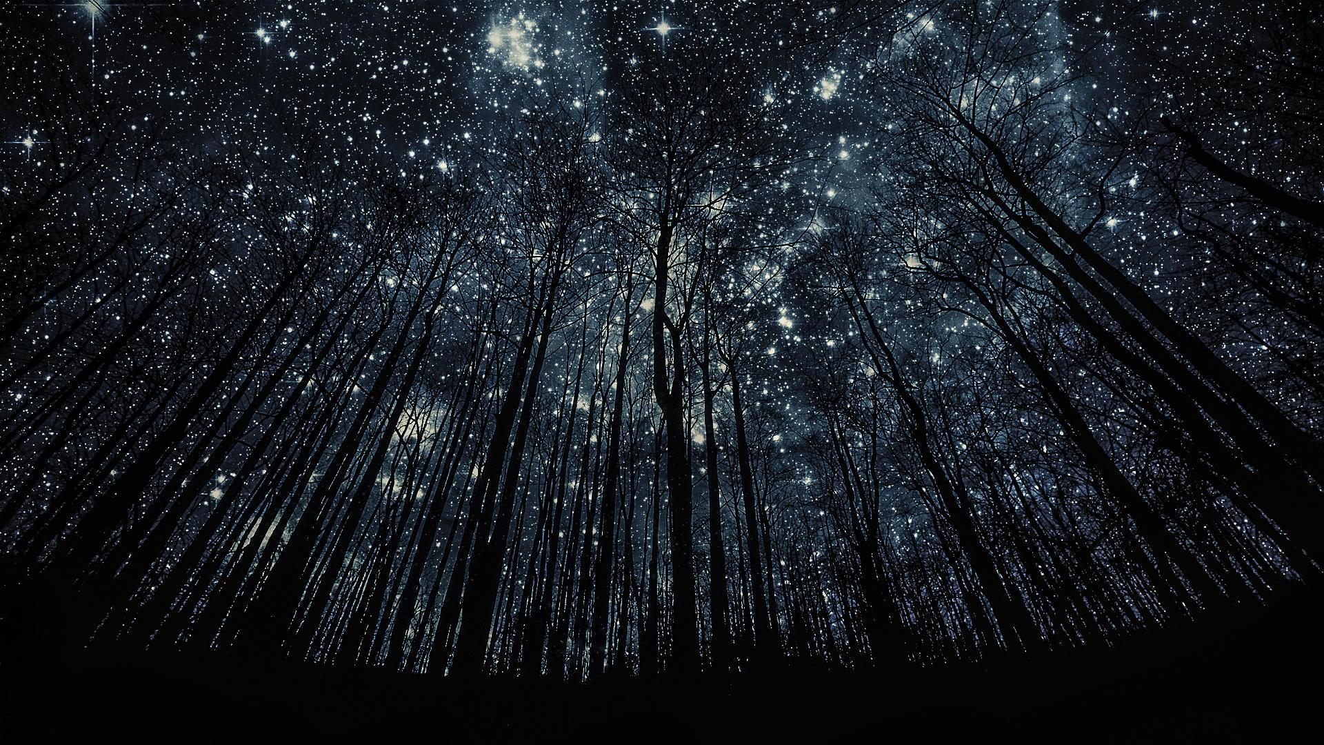 stunning starry skies near Geneva by Harry Finder