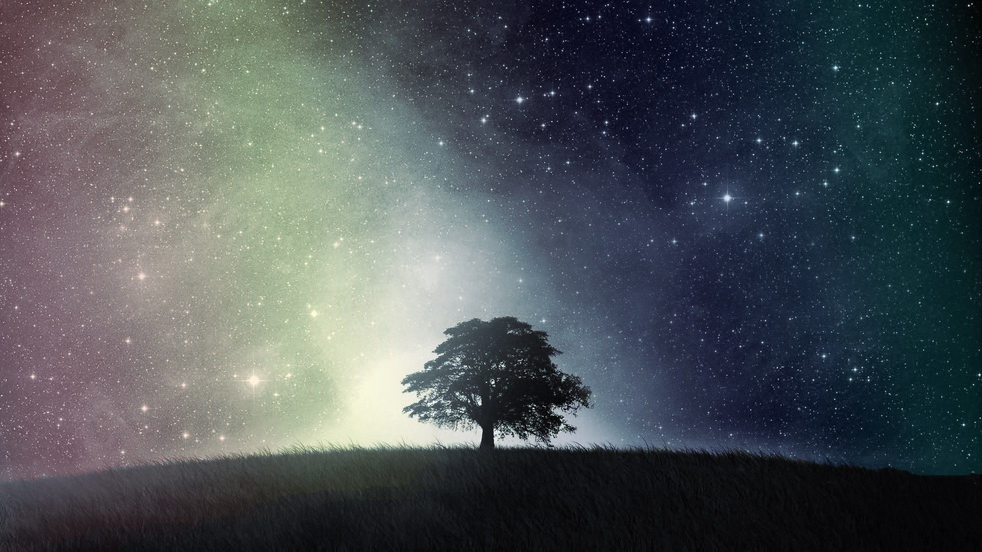 Top Sky Night Tree Starry Images for Pinterest
