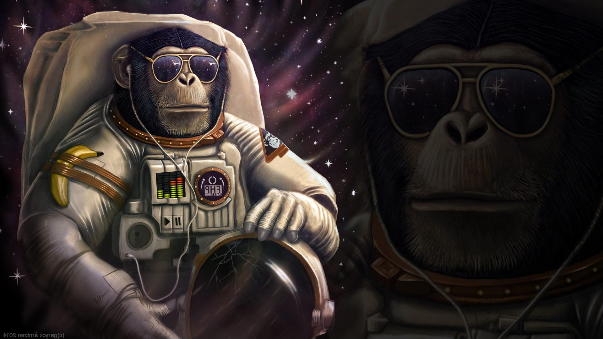 Monkey Astronaut Wallpapers HD