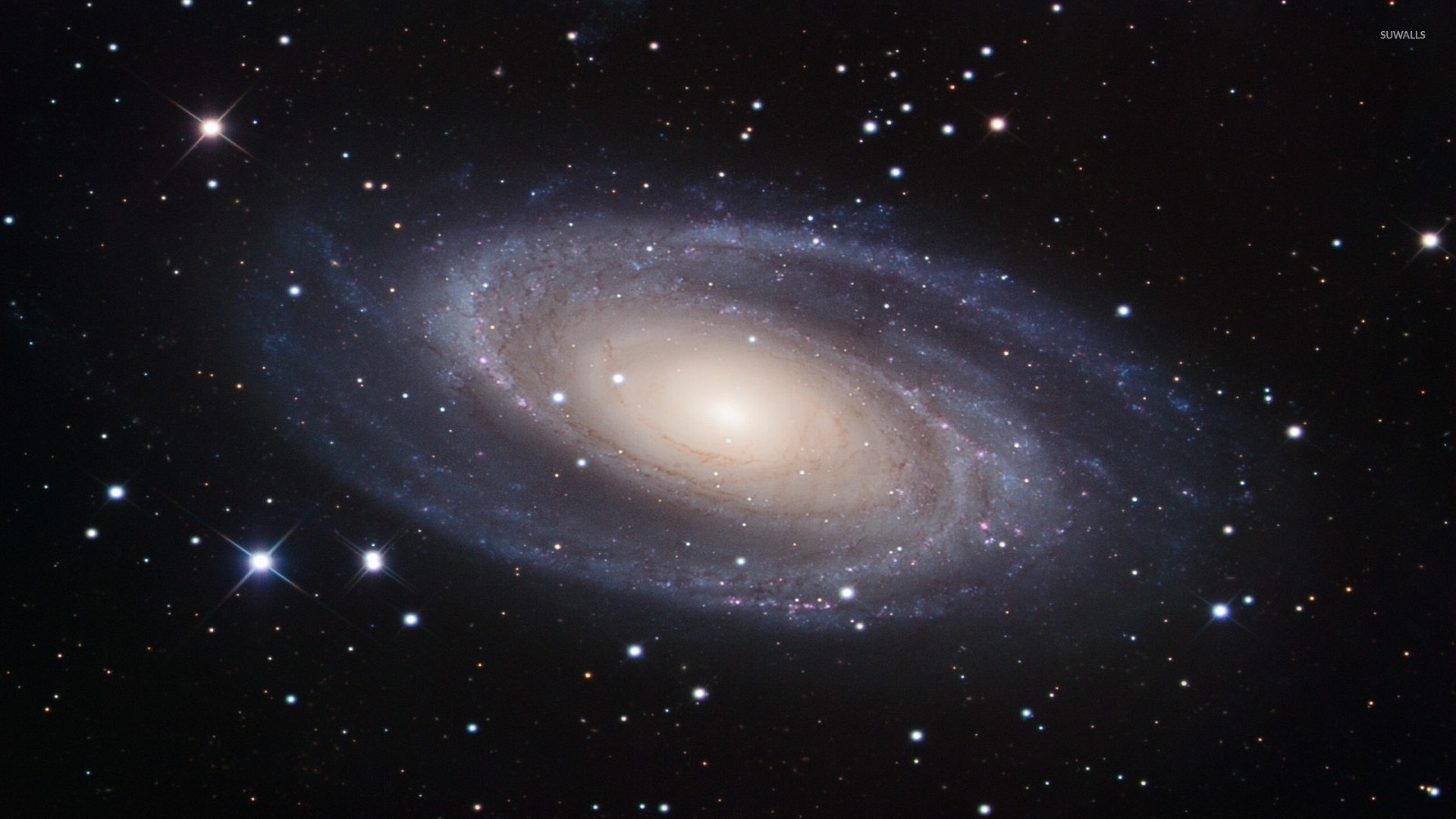 Messier 81 Spiral Galaxy wallpaper