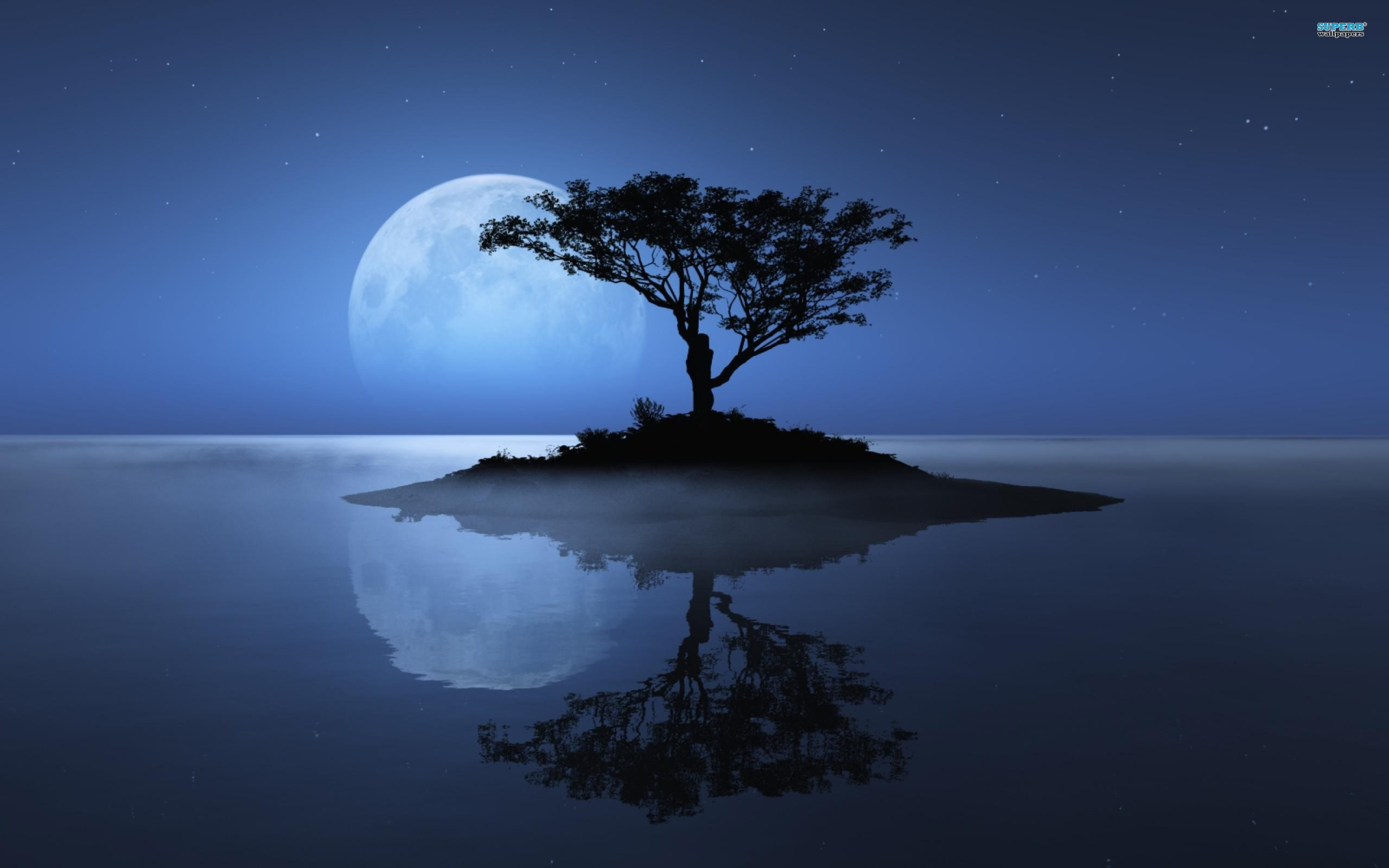 moon shadow on river wallpaper download