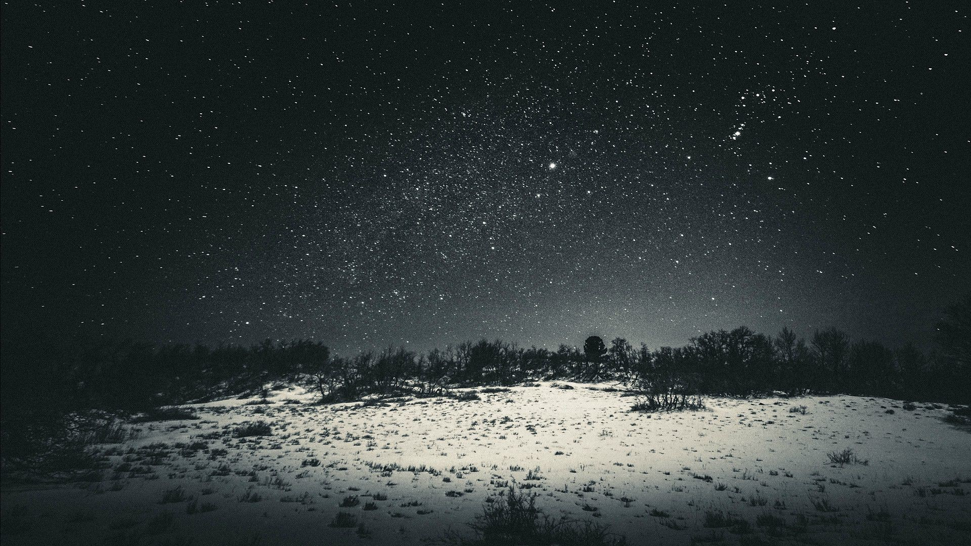 Enchant Your Desktop with These Starry Night Wallpapers