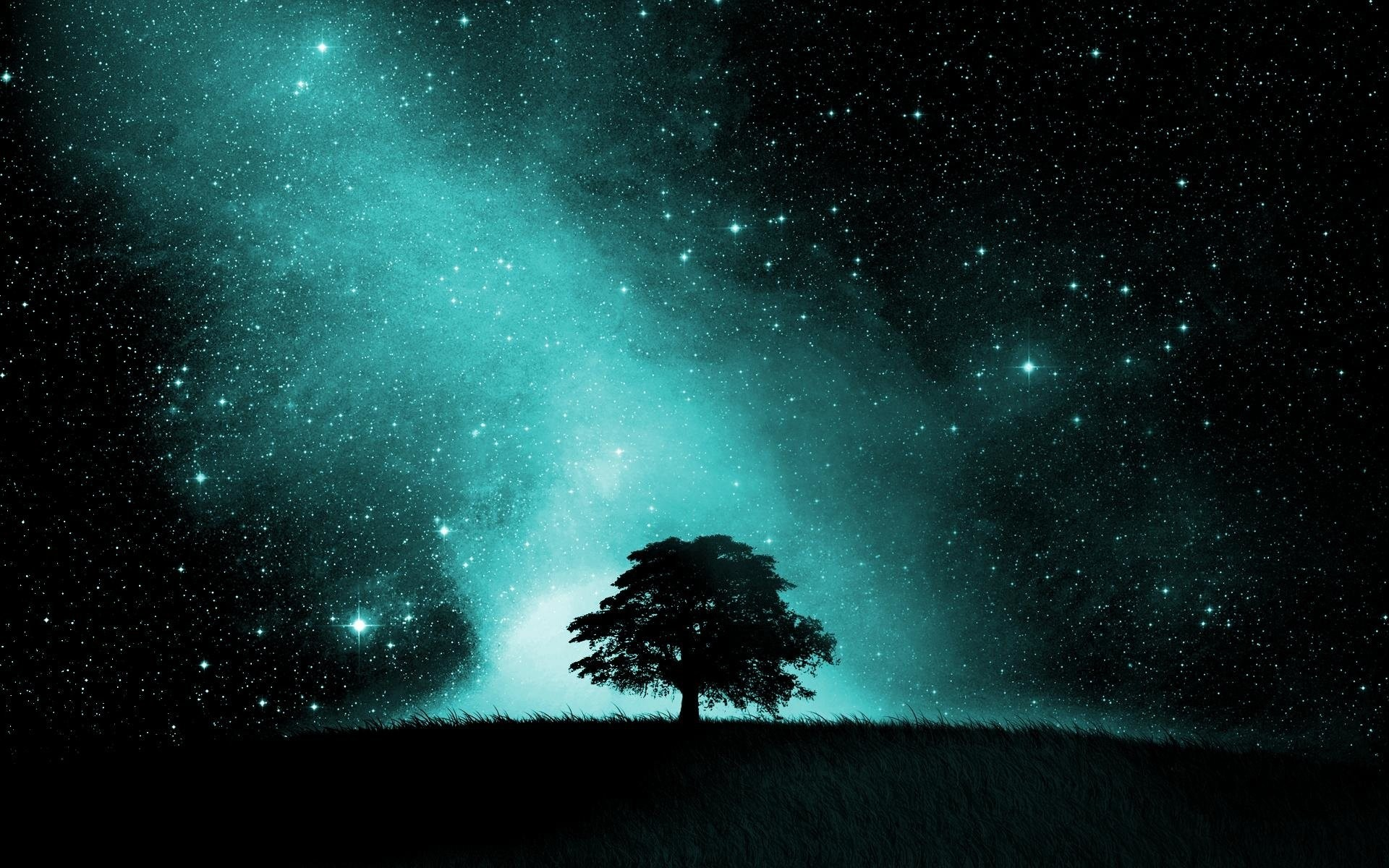 Artistic – Sky Artistic Tree Silhouette Night Starry Sky Stars Wallpaper