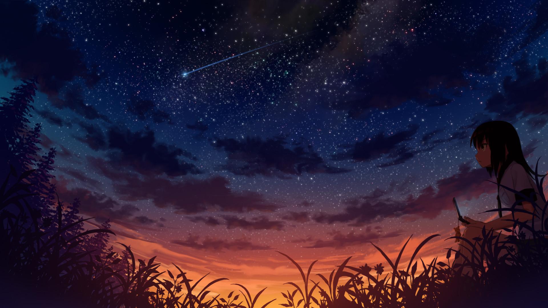 Konachan.com – 170643 black_hair clouds grass original phone sakais3211  scenic sky stars sunset.jpg (1920×1080) | Anime Visionary | Pinterest |  Black hair …