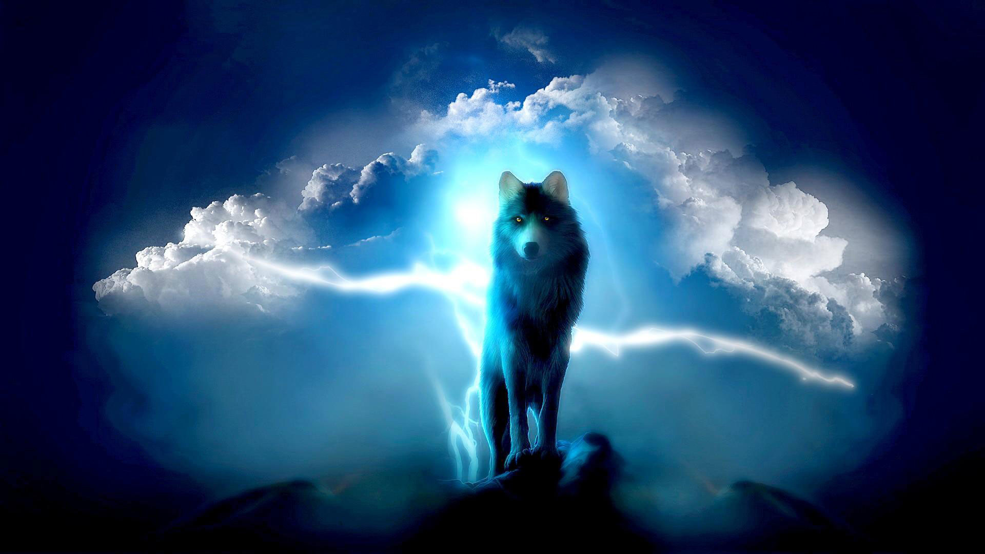hd pics photos attractive animated wolf night blue clouds sky hd quality desktop  background wallpaper