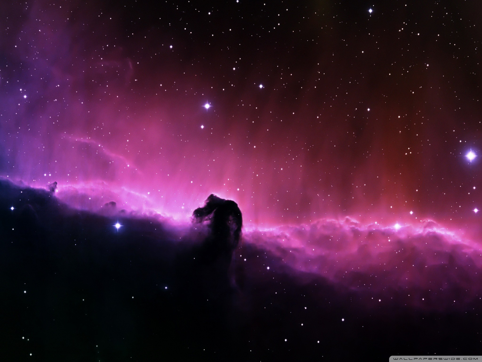 Horsehead Nebula, located in the Orion constellation.