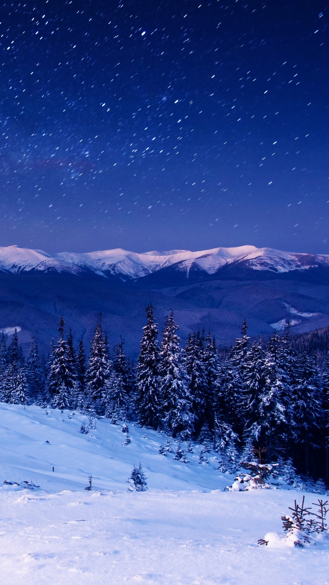 Star Forest Night Home Mountains Trees #iPhone #6 #plus #wallpaper
