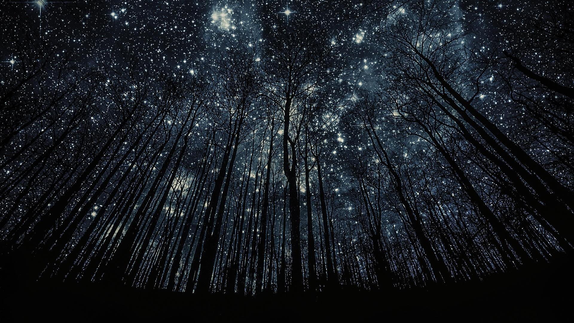 Beautiful Night Sky wallpaper widescreen