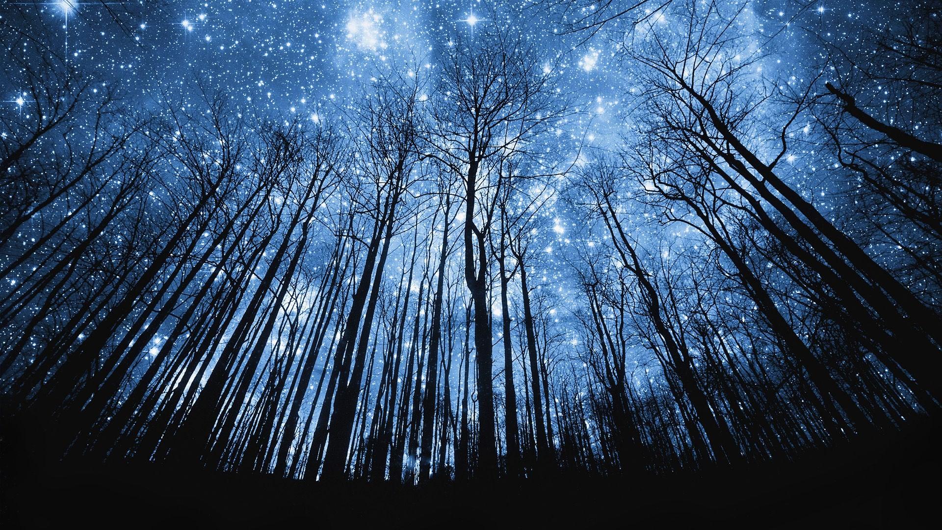 Beautiful Night Sky wallpapers hd