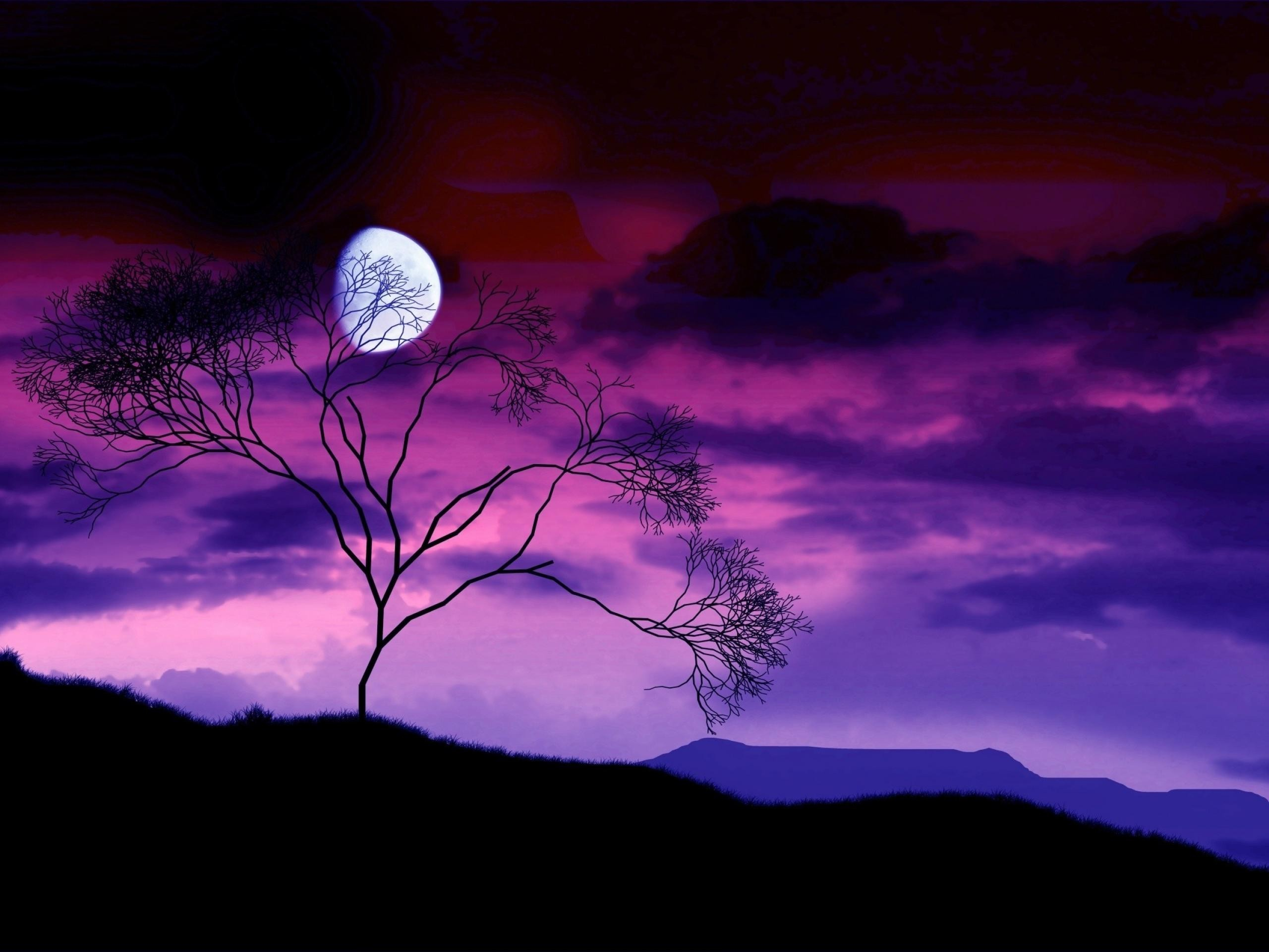 Moon landscapes behind tree scenery scenes worlds wallpaper environments  night garden earth countryside desert sky