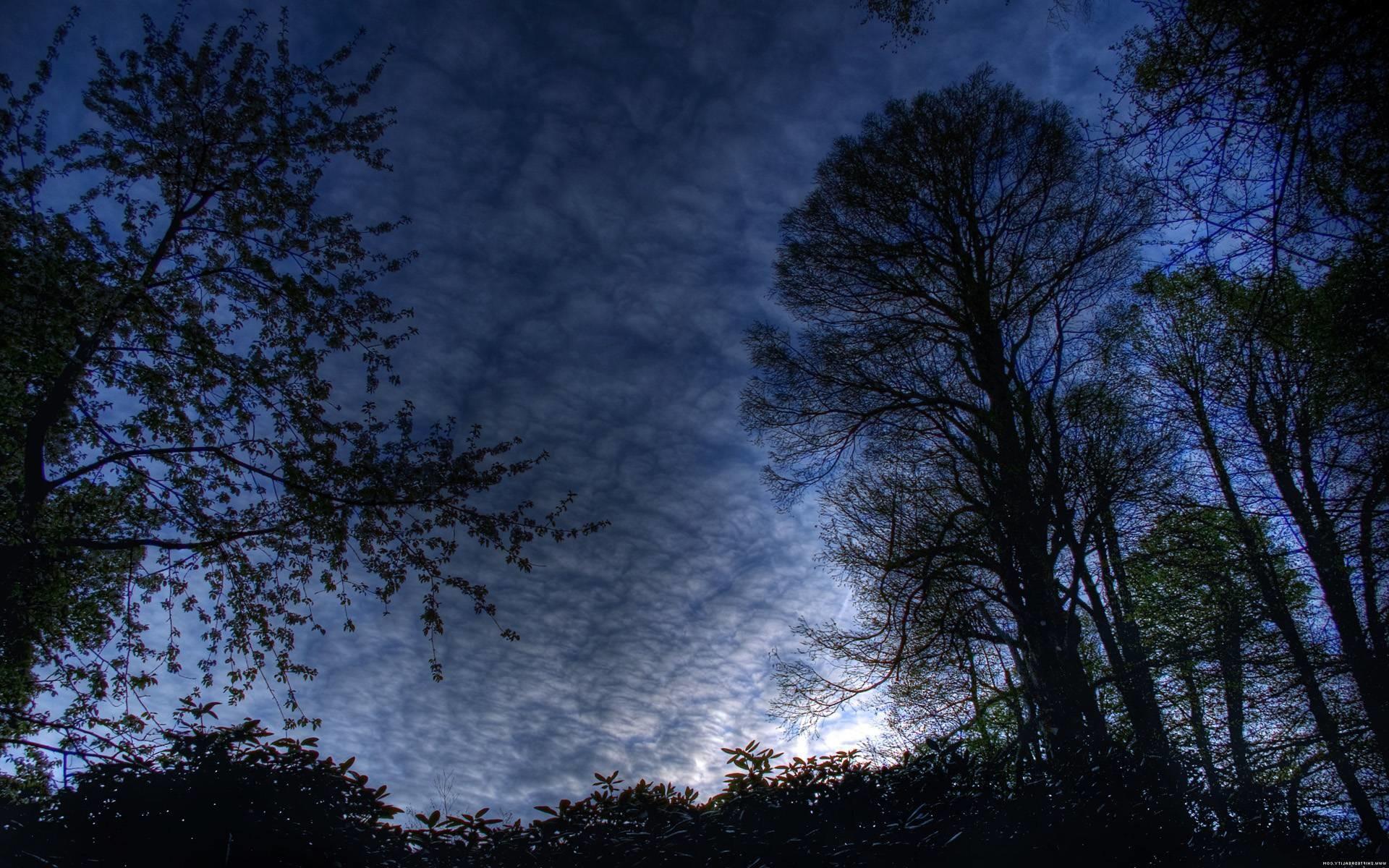pix1000 beautiful night (9)