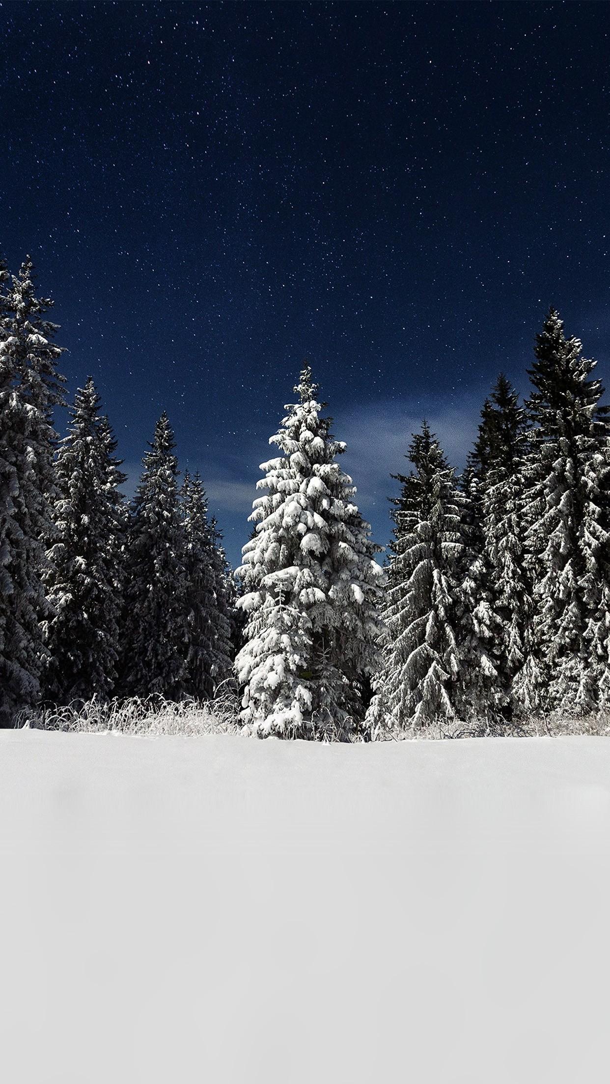 Snow Winter Wood Mountain Sky Star Night