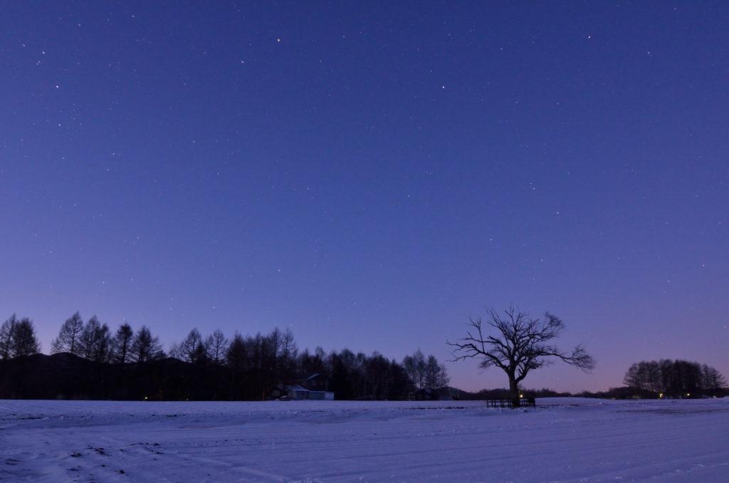 Japan winter field trees snow night lilac sky stars wallpaper | |  179274 | WallpaperUP