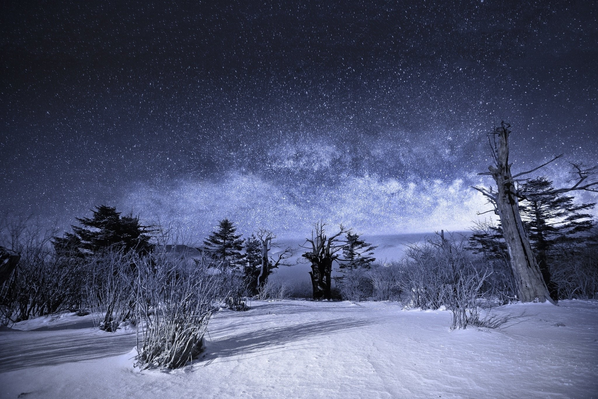 Snow Landscape Stars Nature Night Sky Winter Beautiful Wallpapers Images –  2048×1365
