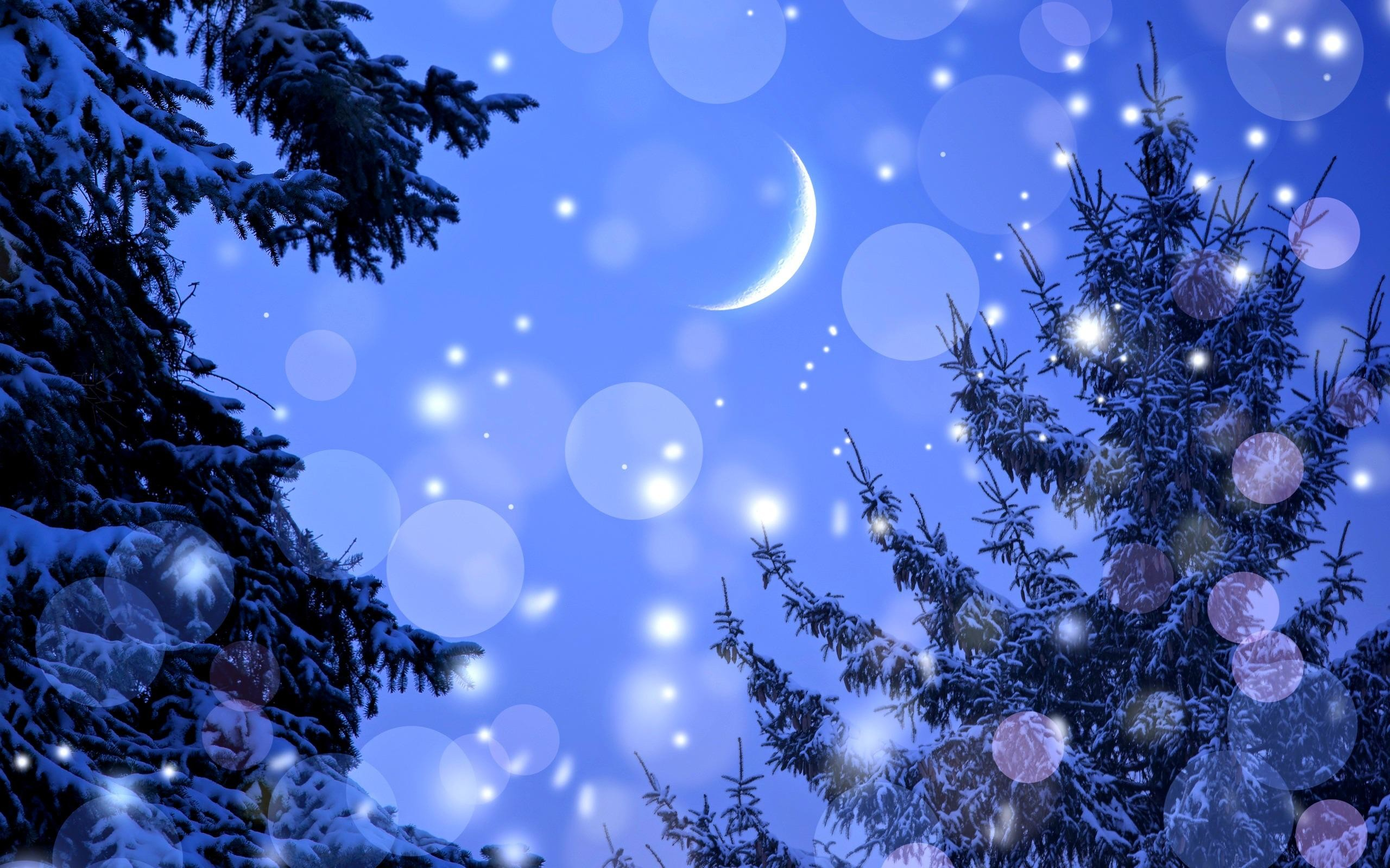 Winter Night >