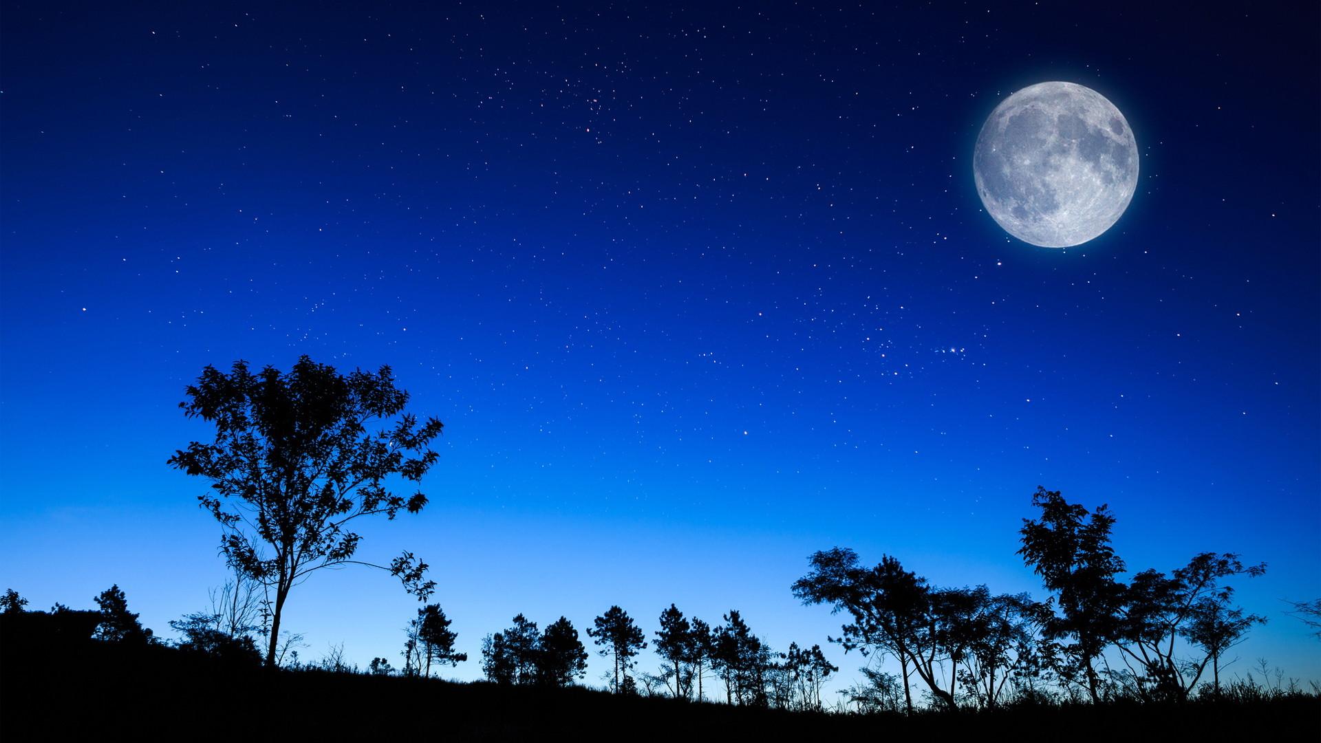 fire, full moon, night, river, wood, island, art, painting | HD wallpapers  | Pinterest | Full moon night