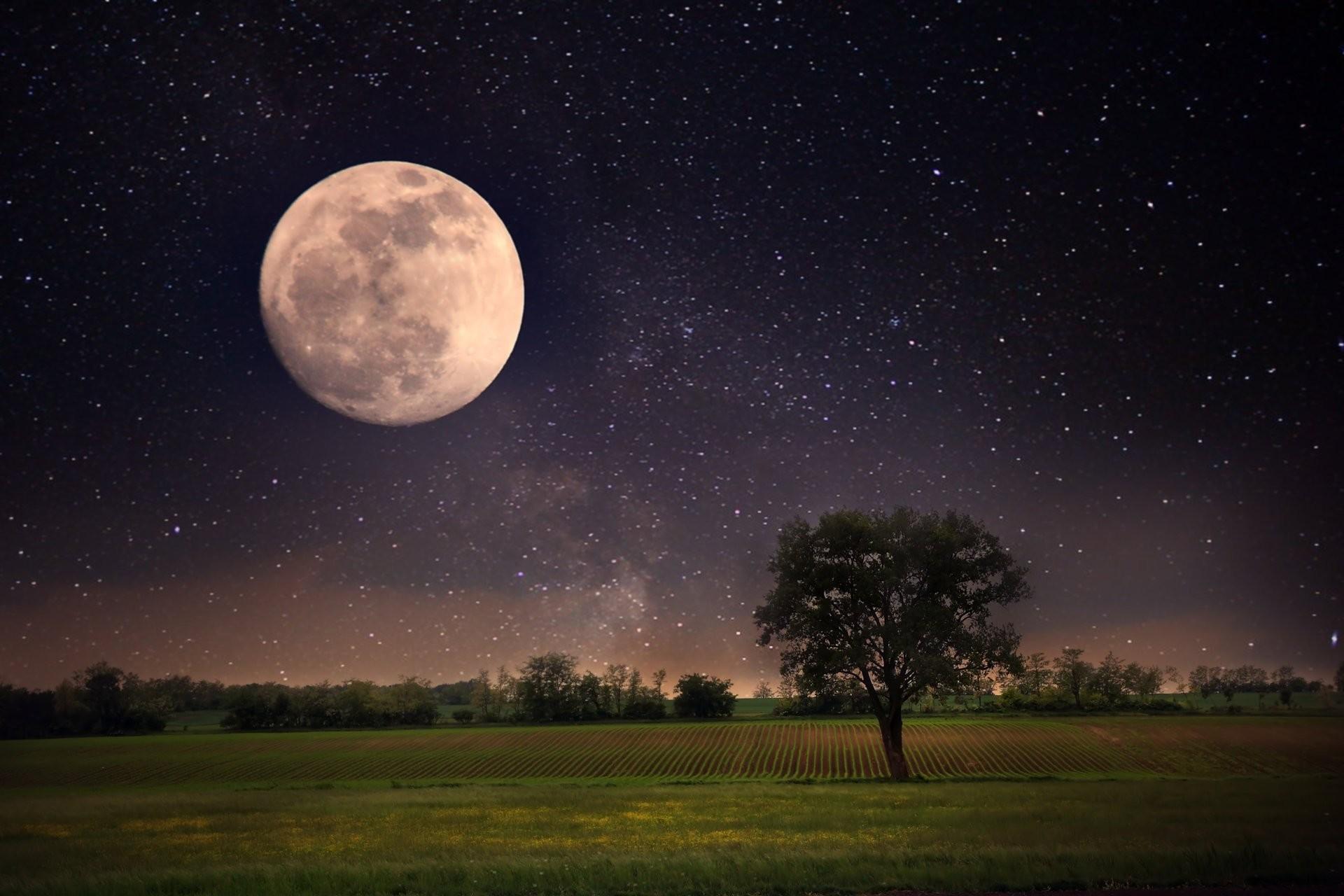 moon night landscape stars full moon sky beautiful scene nature lonely tree  landscape moon night landscape