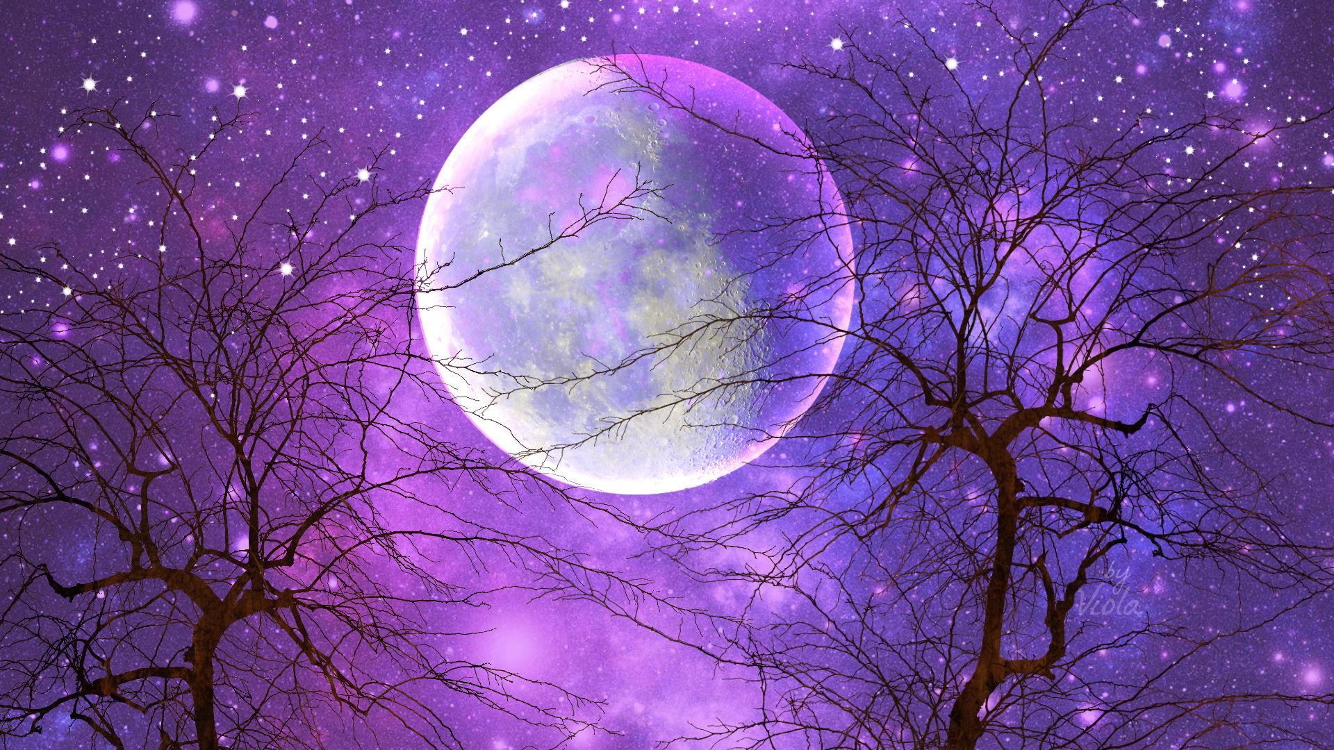 Artistic – Moon Artistic Sky Purple Starry Sky Tree Wallpaper