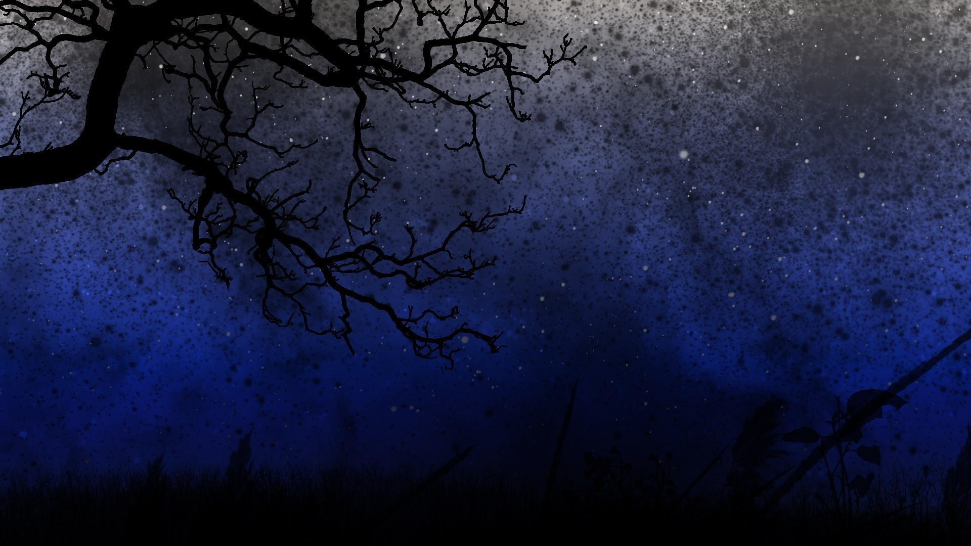 Wallpaper sky, trees, night