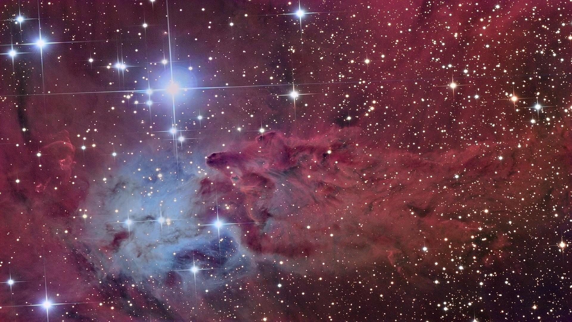 Fox Fur Nebula 586988